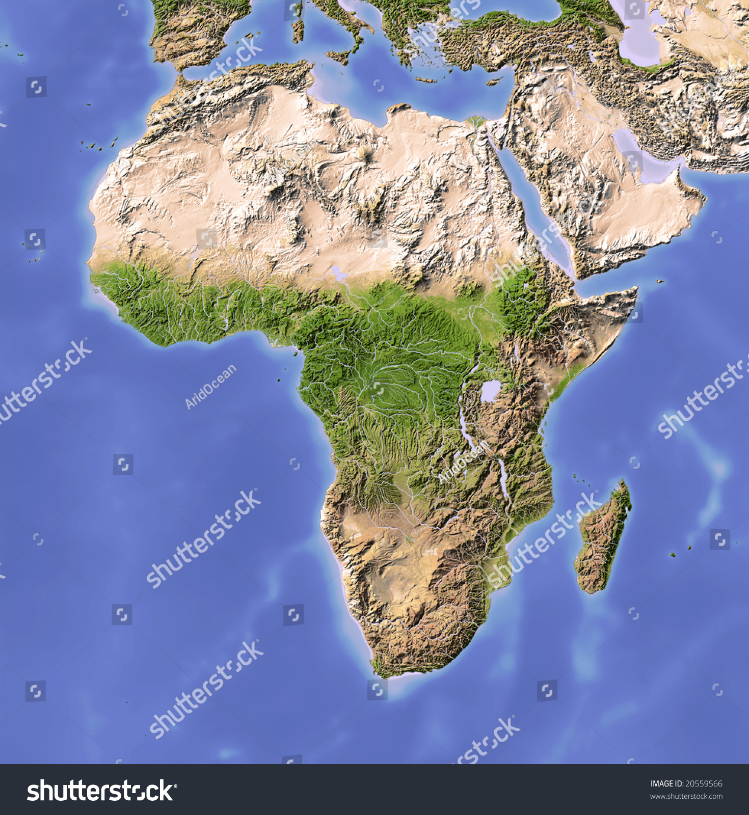 Relief map colored according to vegetation projection data source