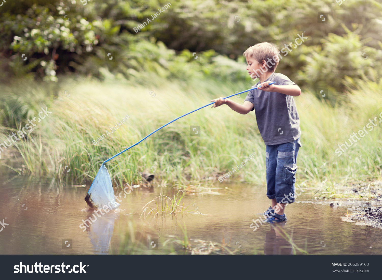 Boy in a pond with a fishing net catching fish in the for Fish catching net