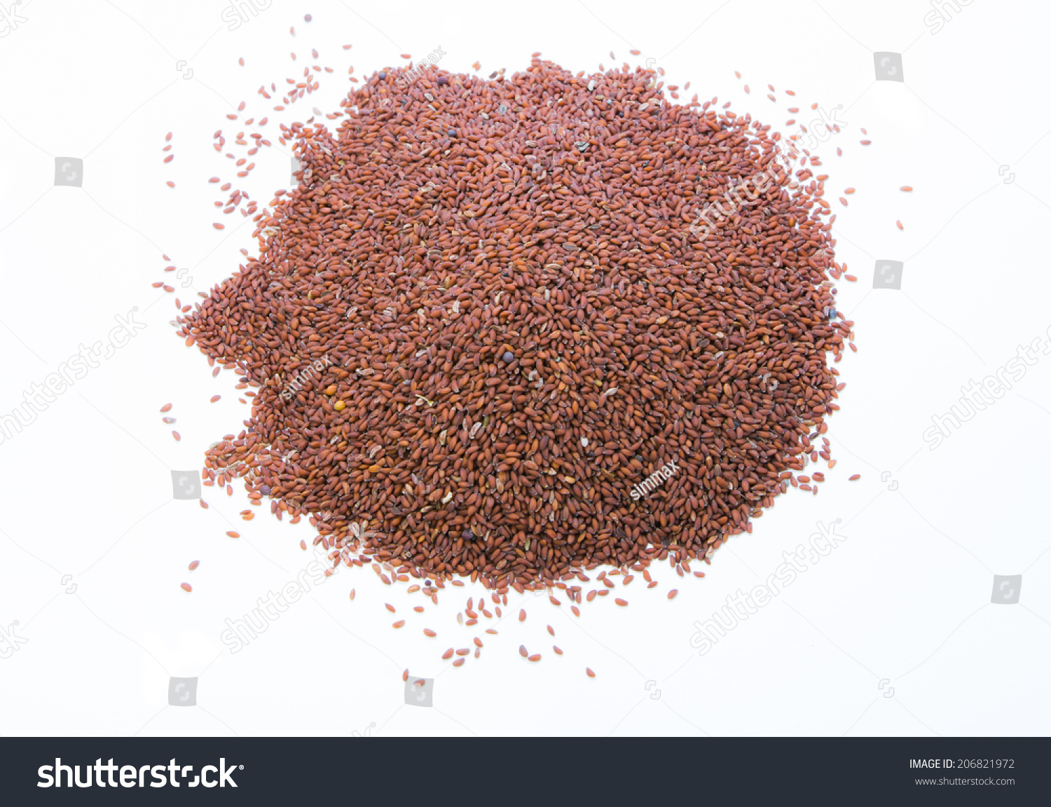 Garden Cress Seed On White Background Stock Photo (Royalty Free ...