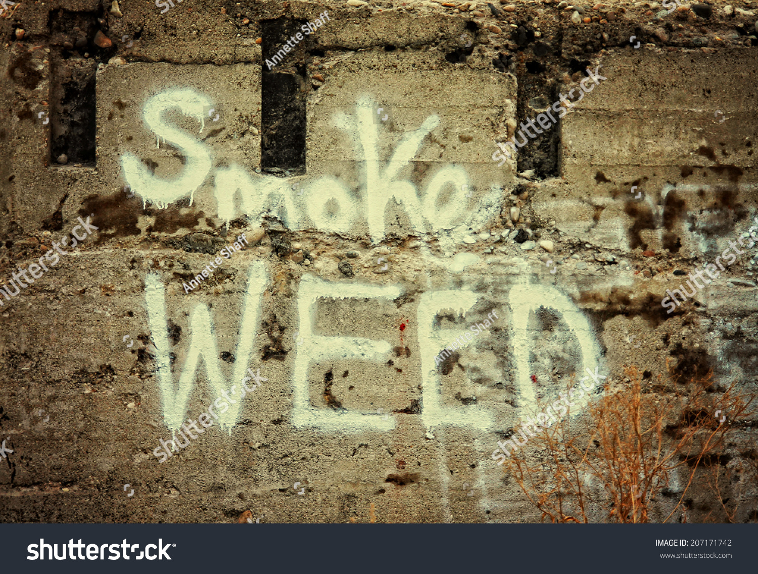 Concrete Wall Painted Text Smoke Weed Stock Photo Edit Now