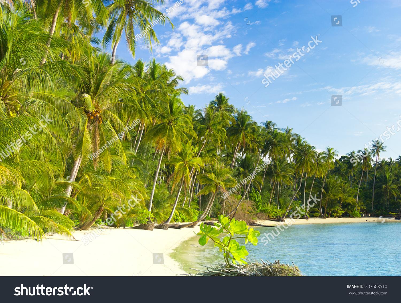 exotic relaxation sunshine coast errotic city