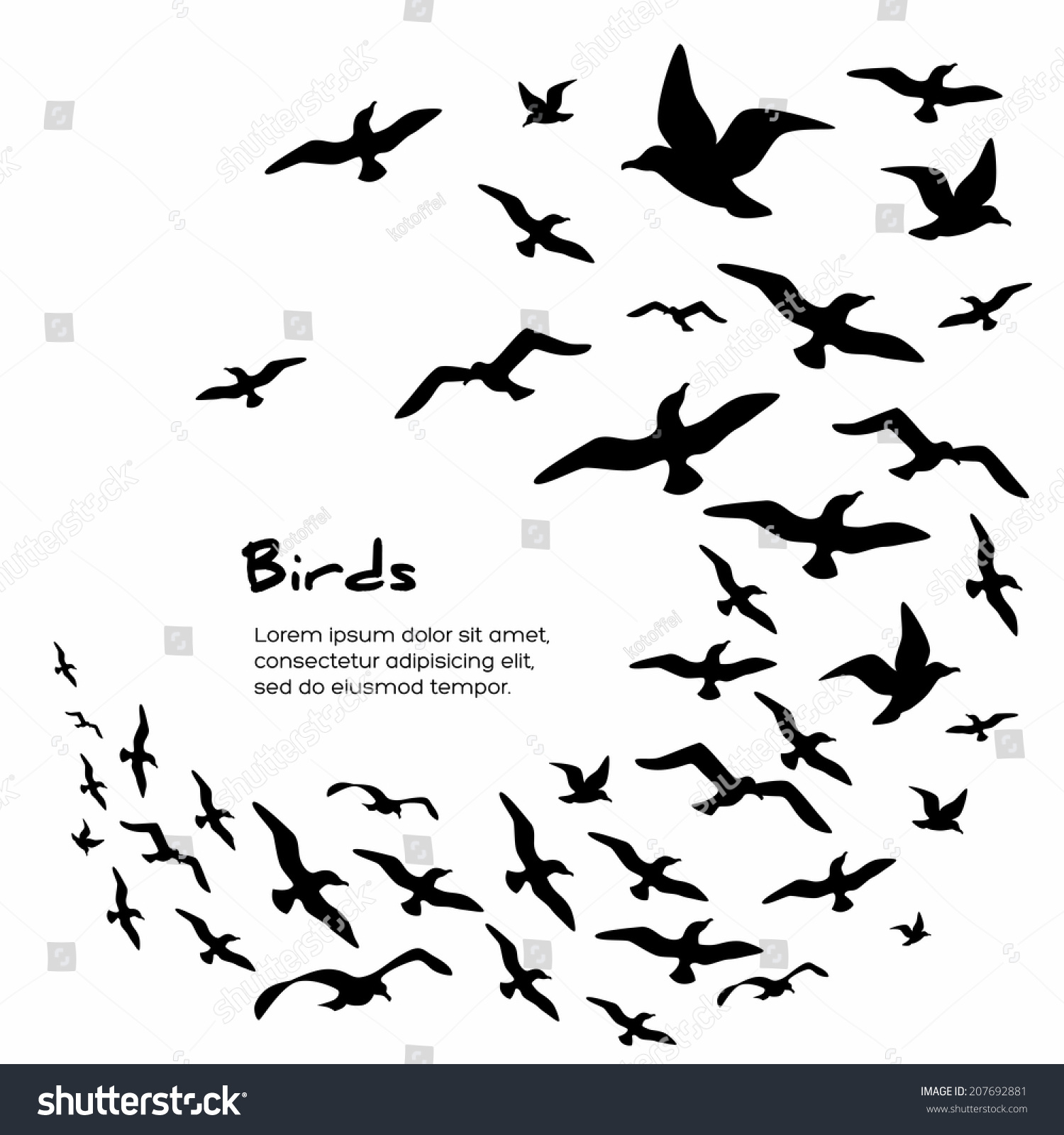 Stock Vector Silhouettes Of Flying Birds Vector Illustration