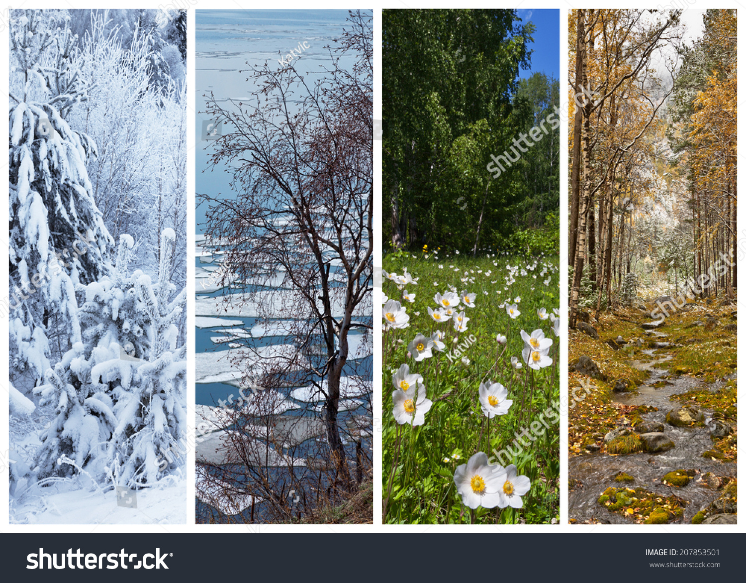 Four Seasons Collage Stock Photos, Images, &- Pictures - 230 Images