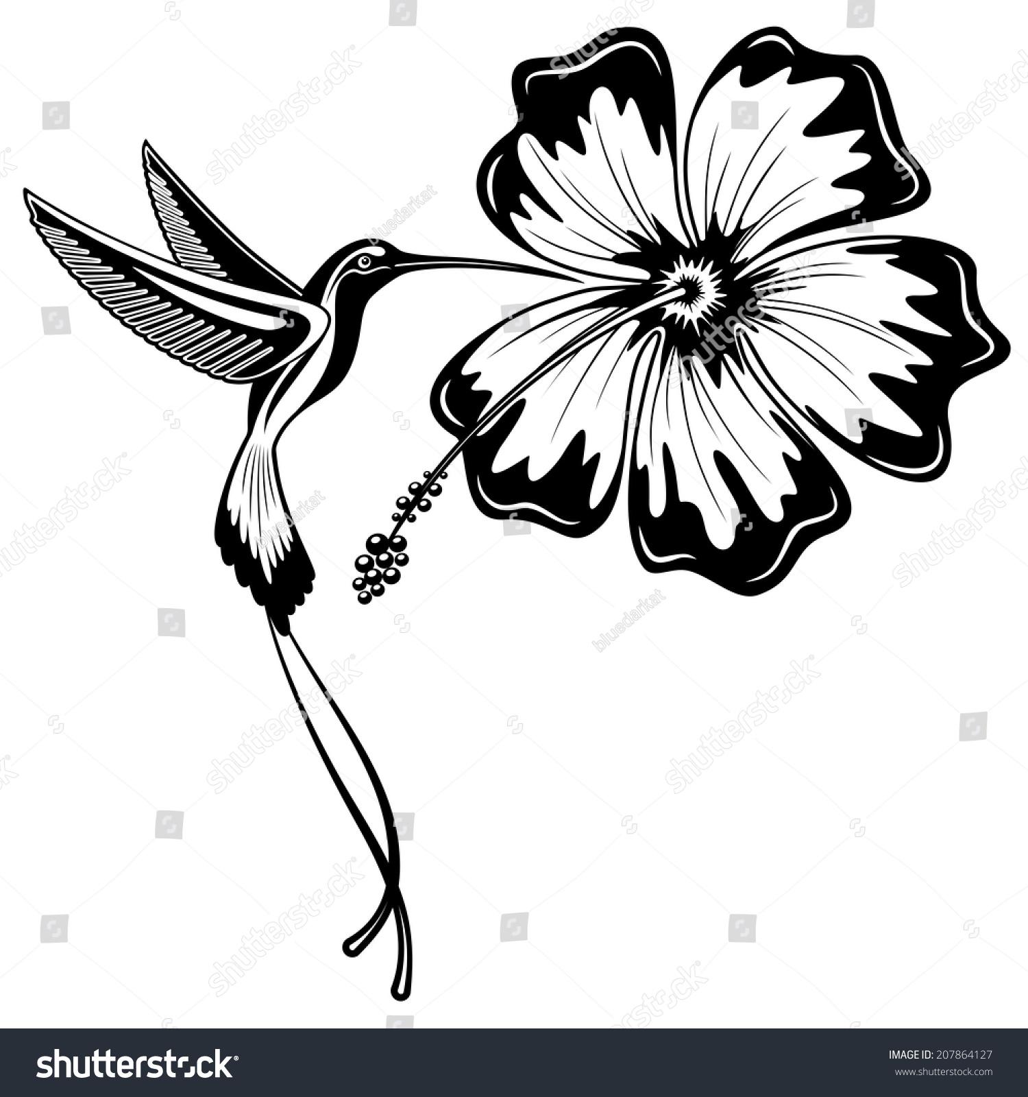 Hummingbird Hibiscus Tattoo Stock Vector Royalty Free 207864127