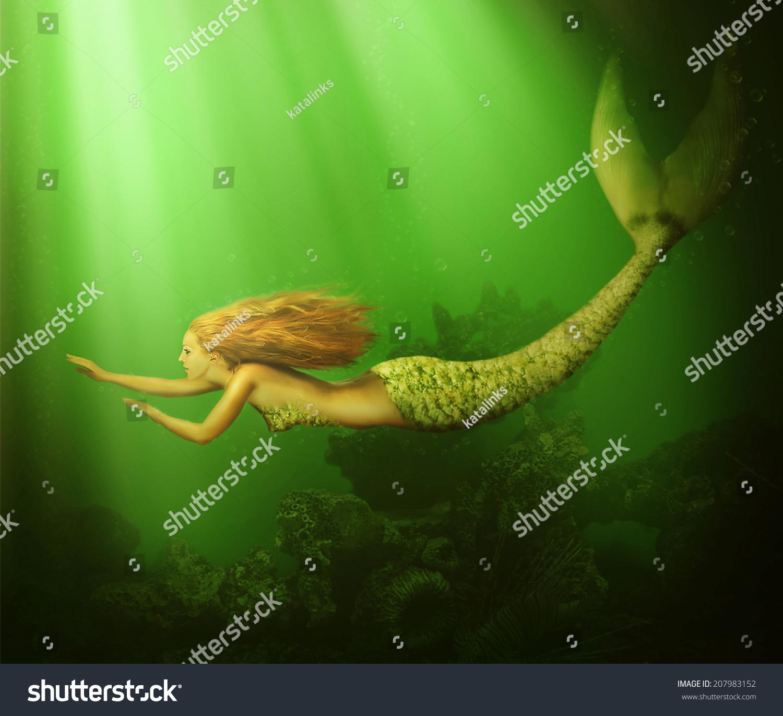 Fish tail fish beautiful - photo#11