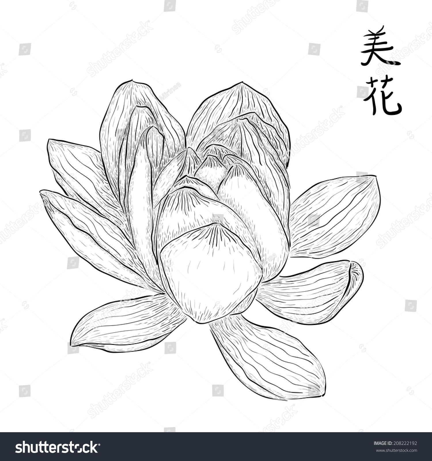 Hand drawn lotus flower chinese hieroglyphs stock vector 208222192 hand drawn lotus flower with chinese hieroglyphs meaning beautiful flower black and white izmirmasajfo