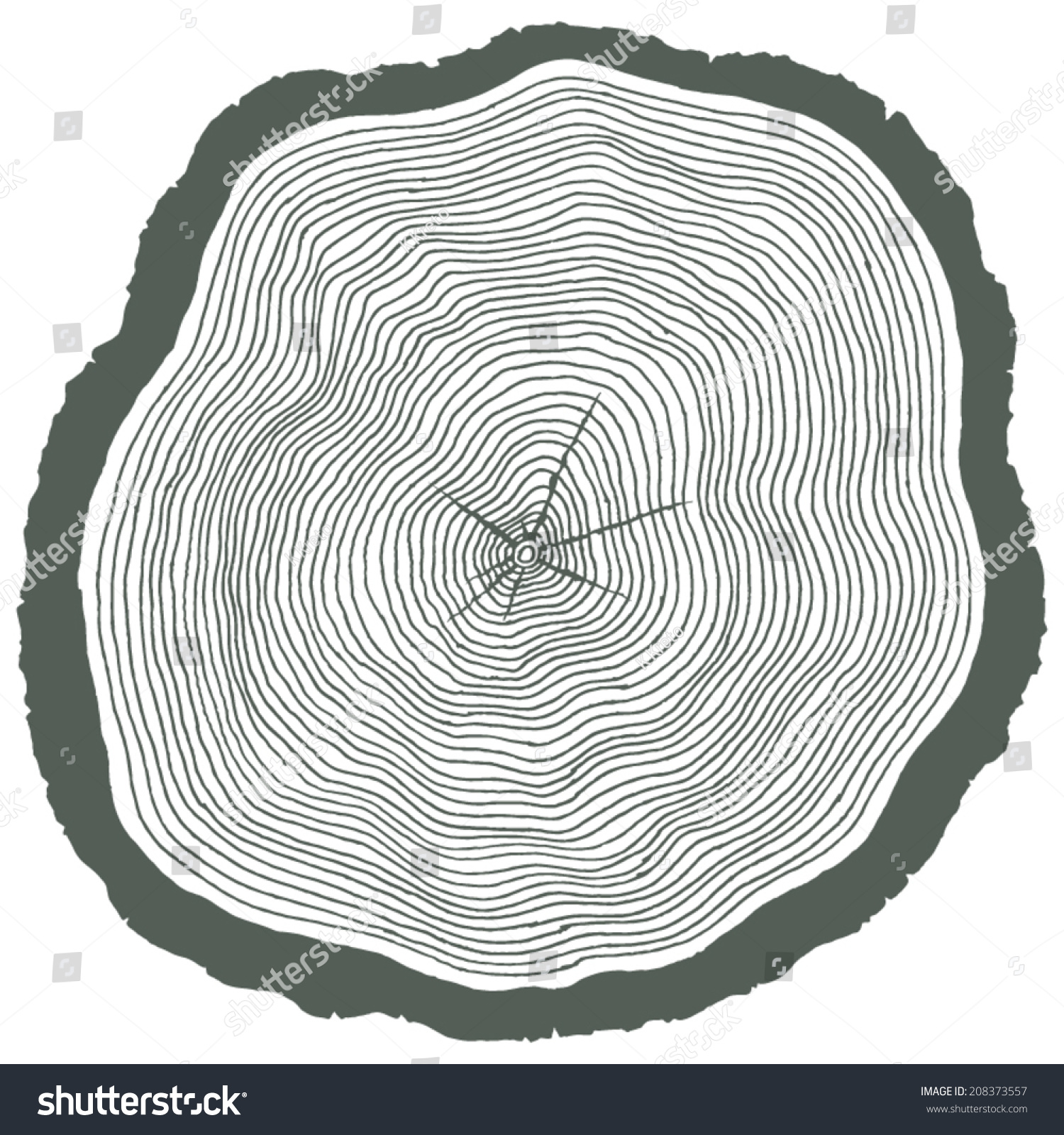 Set Of Four Vector Tree Rings Background And Saw Cut Tree Trunk ...