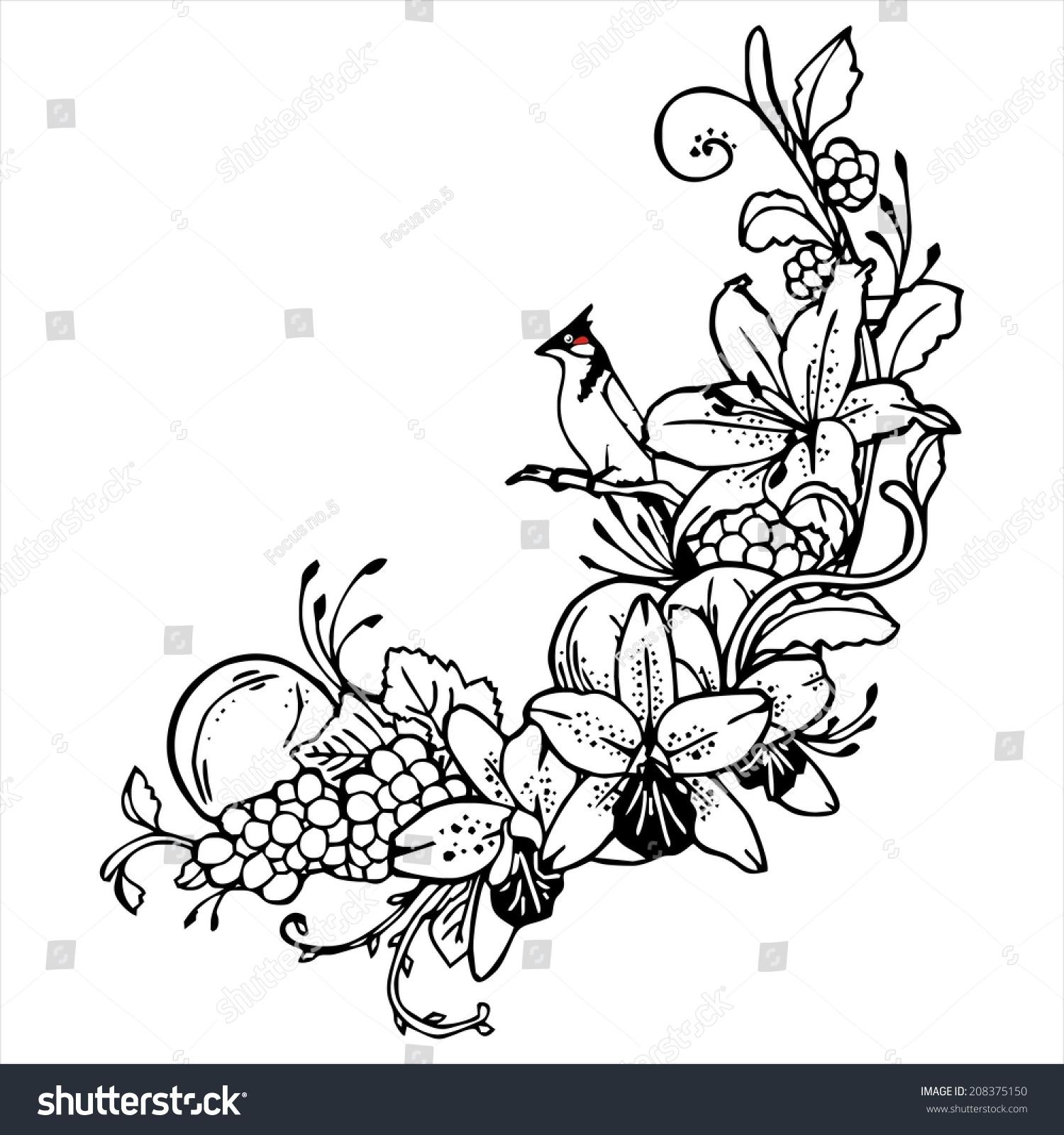 Shoe Flower Line Drawing : Royalty free bird orange flower line drawing vintage