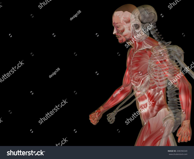 Anatomy Concept Conceptual Human Man Body Stock Illustration