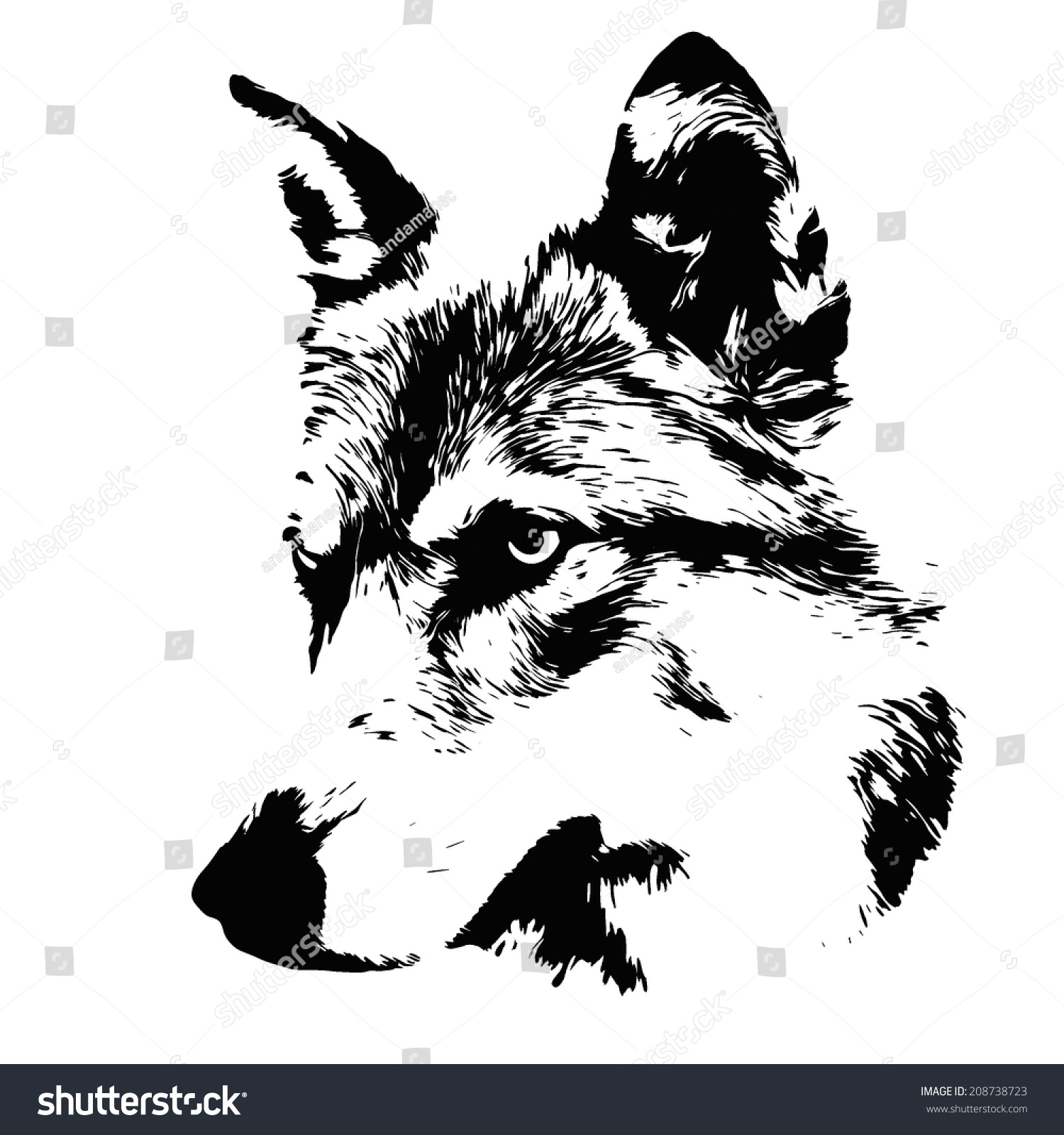 Head Of A Wolf, Isolated On White Background. Side Face