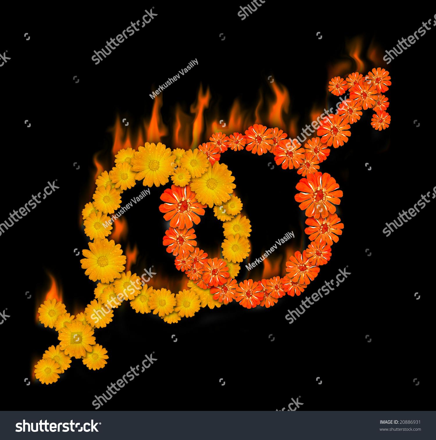 Male female sex symbols ablaze flowers stock illustration 20886931 male and female sex symbols ablaze flowers on black background biocorpaavc