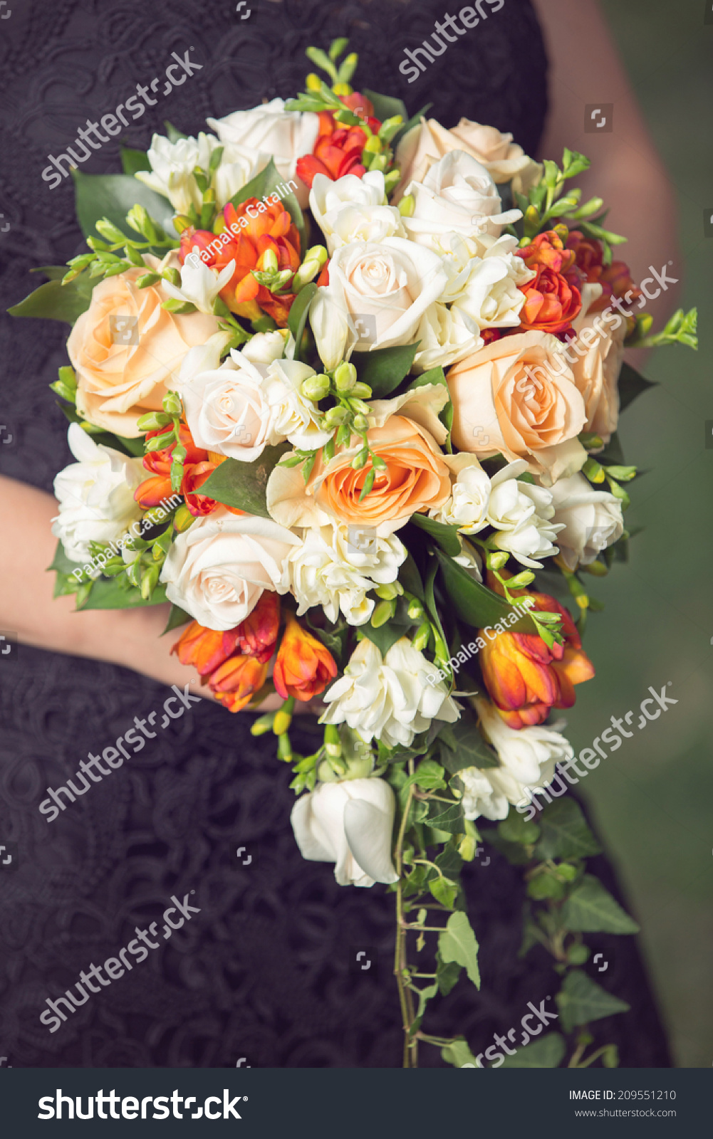 Woman Holding On Beautiful Cascade Flower Stock Photo (Royalty Free ...