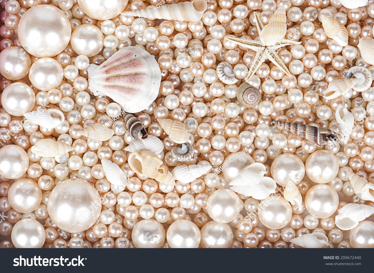 The Background Of Pearls And Sea Shells Stock Photo ...