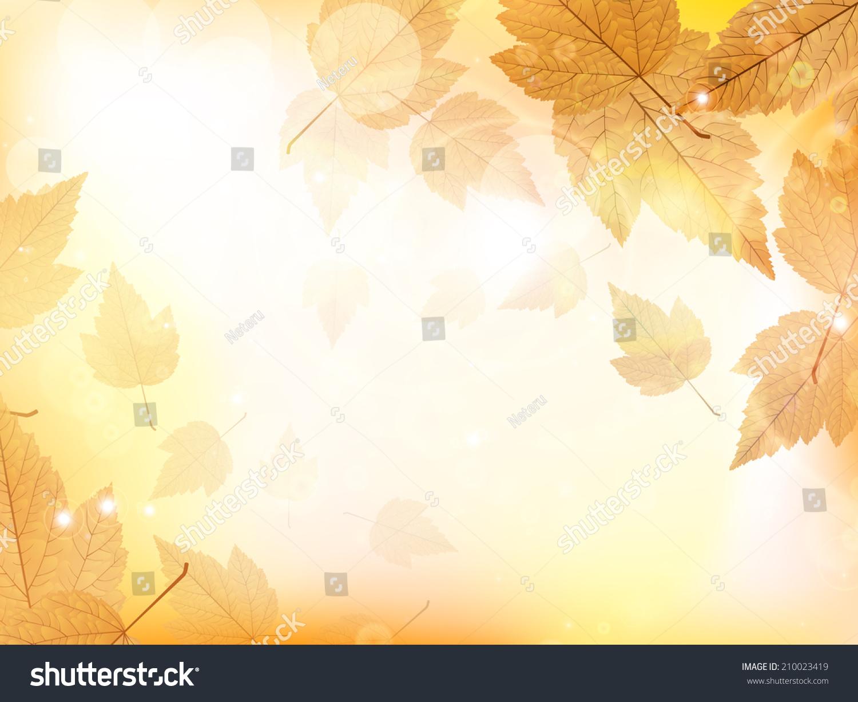 autumn design background leaves falling tree のベクター画像素材