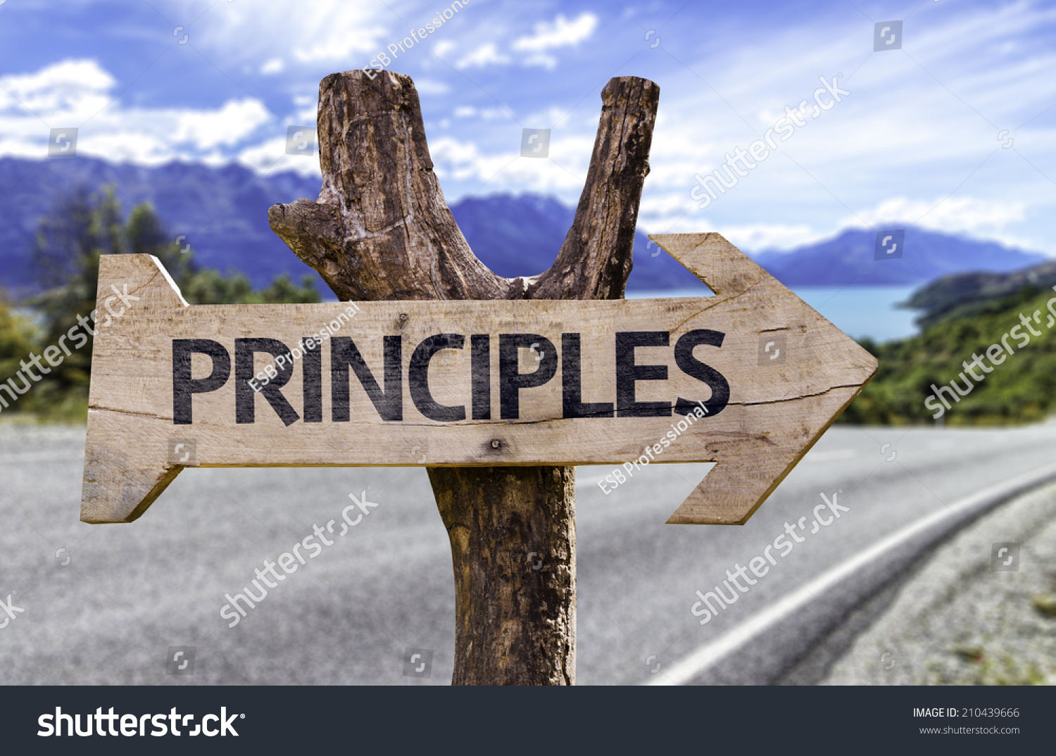Principles Wooden Sign Highway On Background Stock Photo. Carpet Cleaning Chandler Az Umkc Social Work. Retail Signage Software Paycheck Tax Deduction. Criminal Defense Lawyers Fort Lauderdale. Melrose Wakefield Oral Surgery. Redhat Cluster Documentation Fiat 2013 500. Second Home Mortgage Down Payment. Homeowners Insurance Umbrella Policy. Usf Dermatology Davis Island Server In Dmz