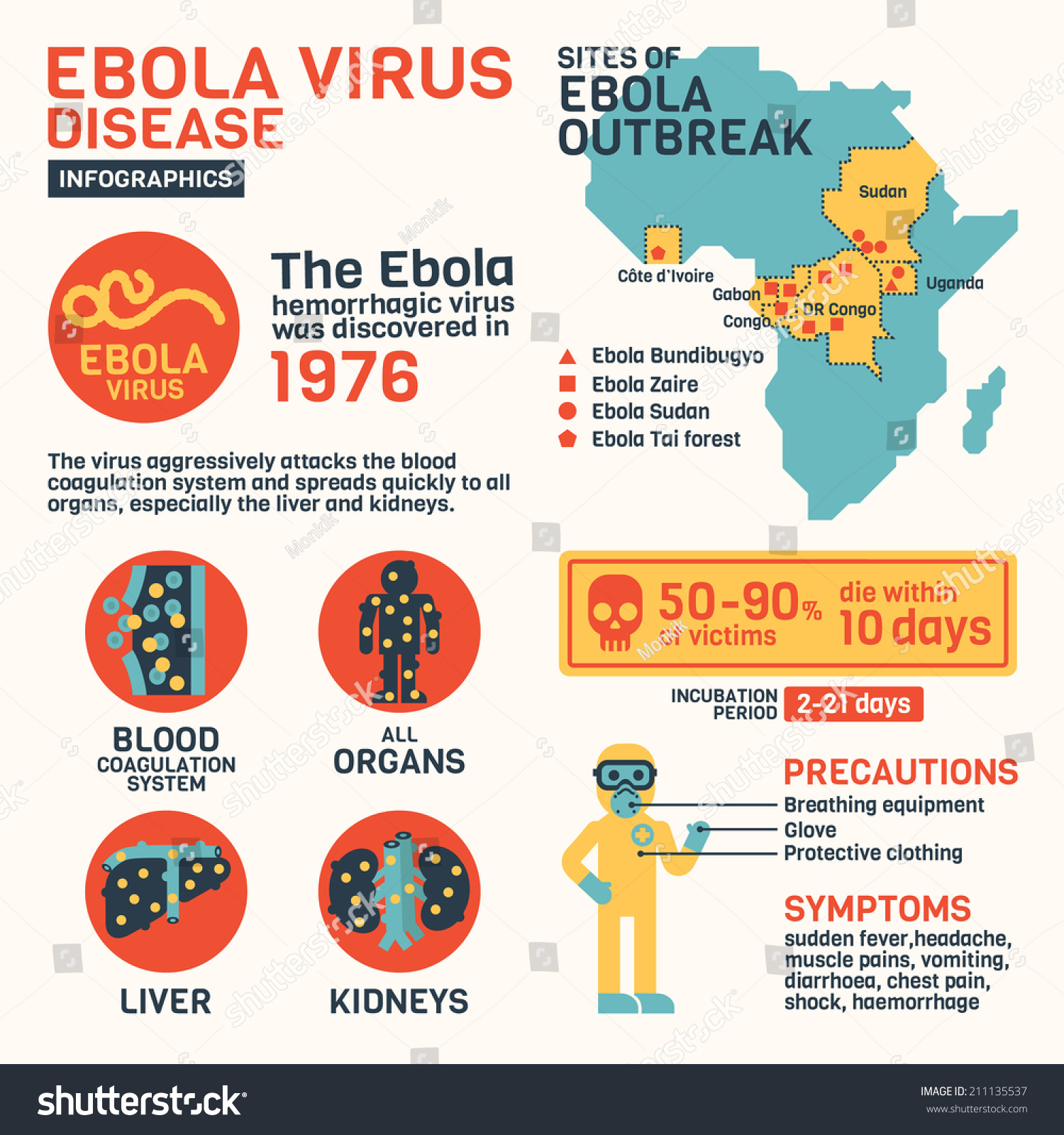 a history of the ebola virus an infectious disease Causative agent the ebola virus disease (evd formerly known as ebola  haemorrhagic fever) is caused by infection with ebola virus which.