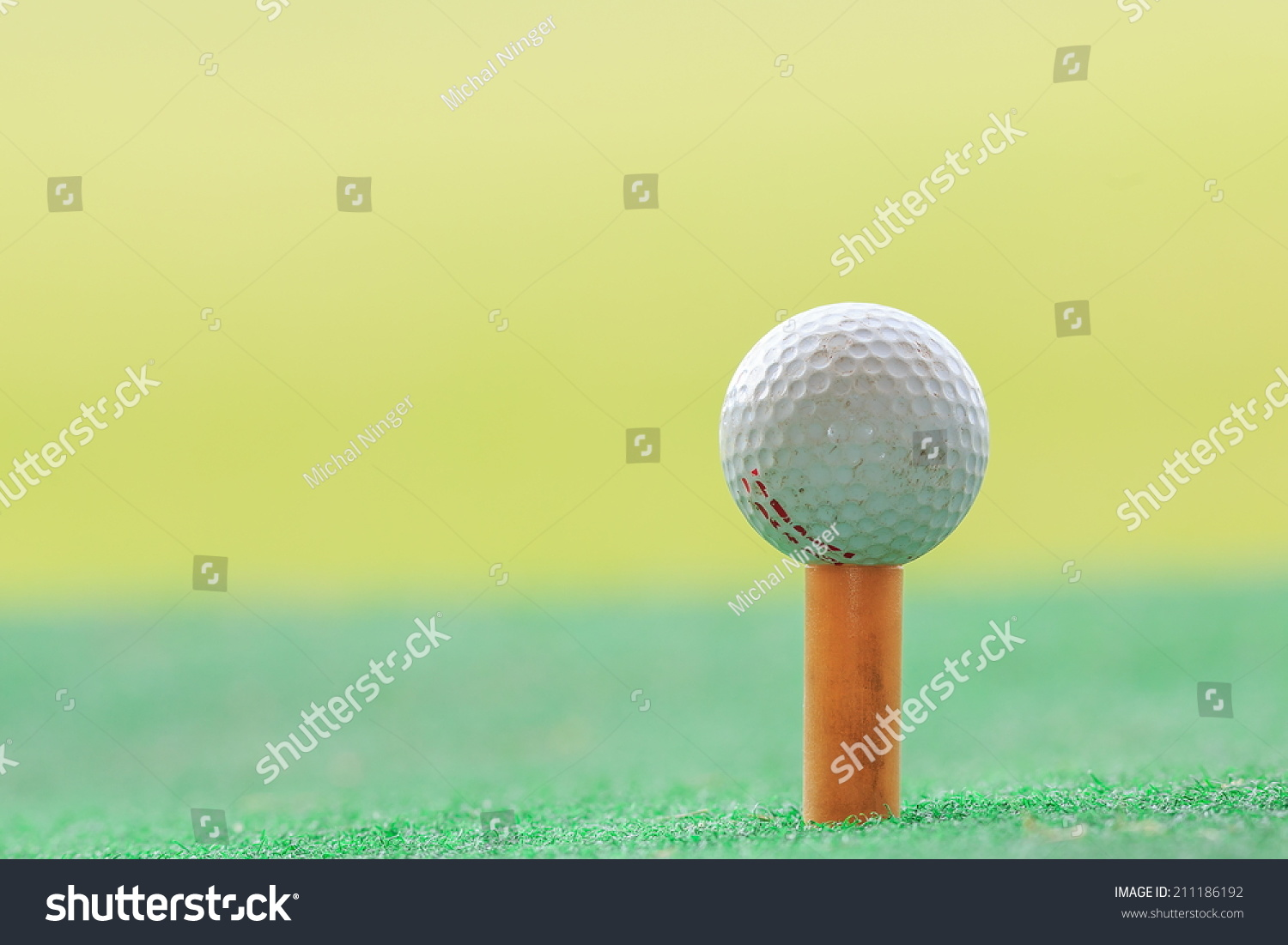 detail of a golf ball on a tee