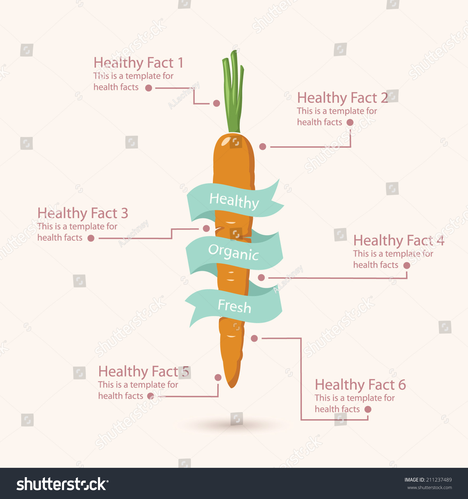 Healthy Vegetable Infographic Carrot Stock Vector 211237489 ...
