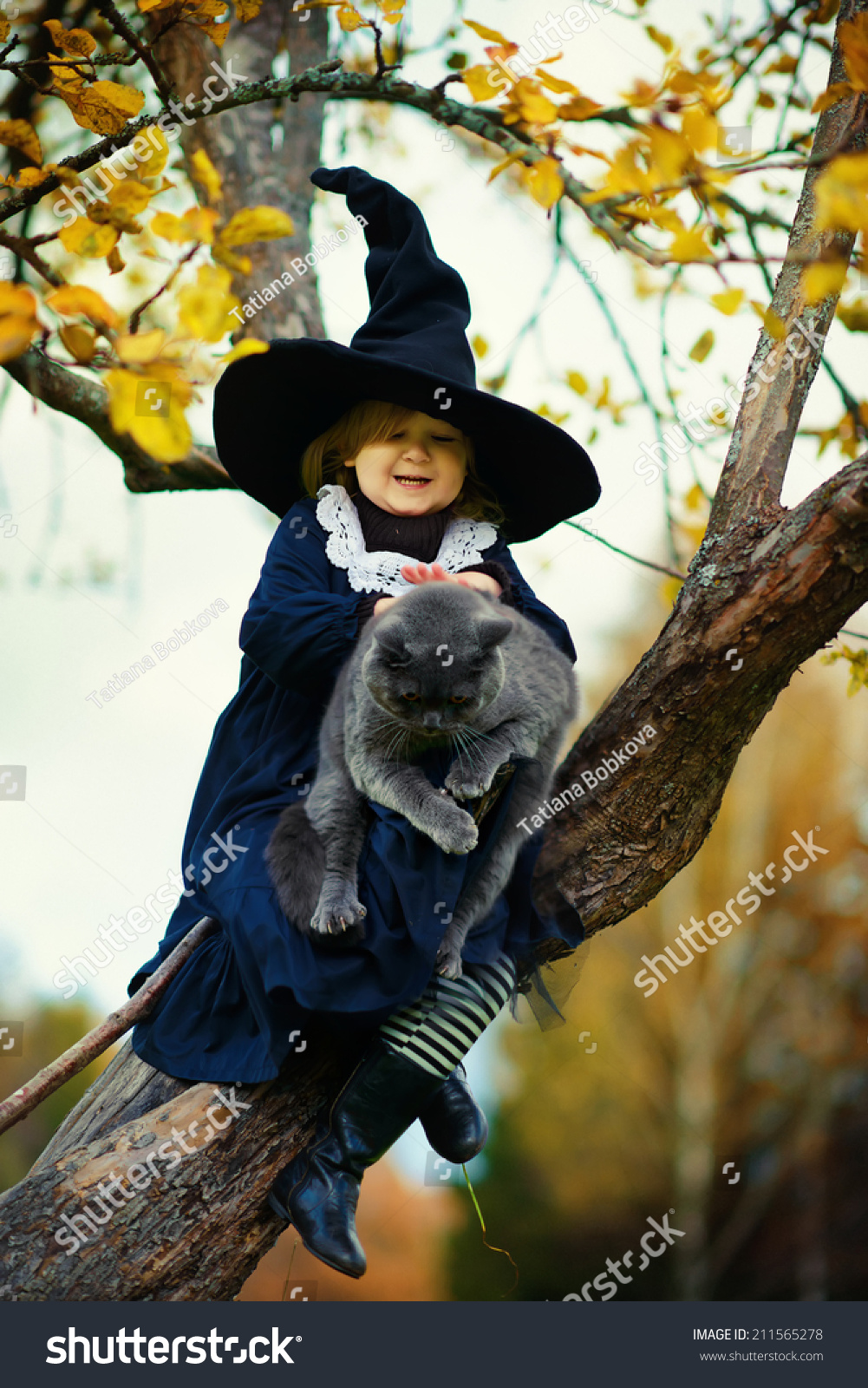 Little Cute Girl Black Witch Costume Stock Photo 211565278 ...