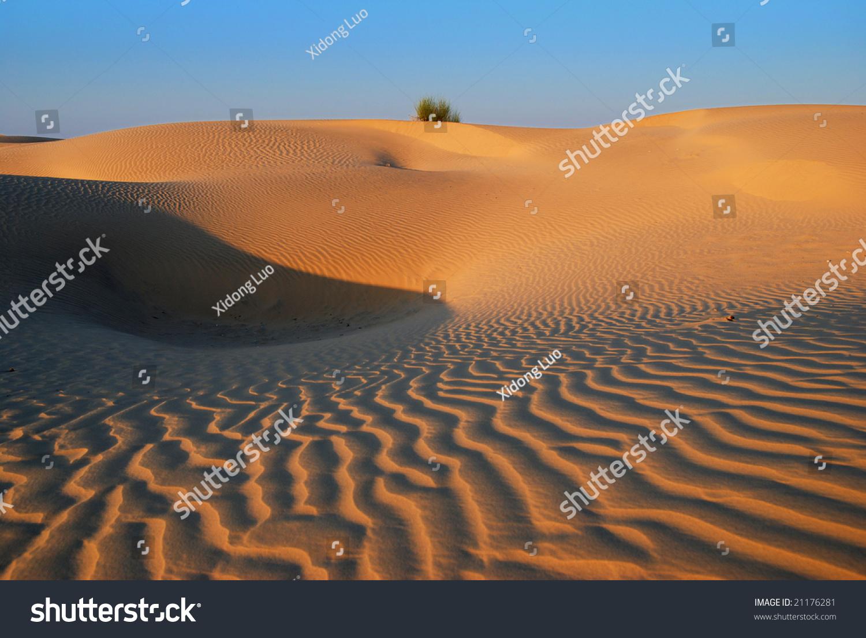 Golden Desert Curves Cluster Grass On Stock Photo (Edit Now) 21176281