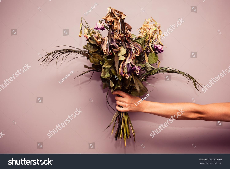 Womans Hand Holding Bouquet Dead Flowers Stock Photo Edit Now