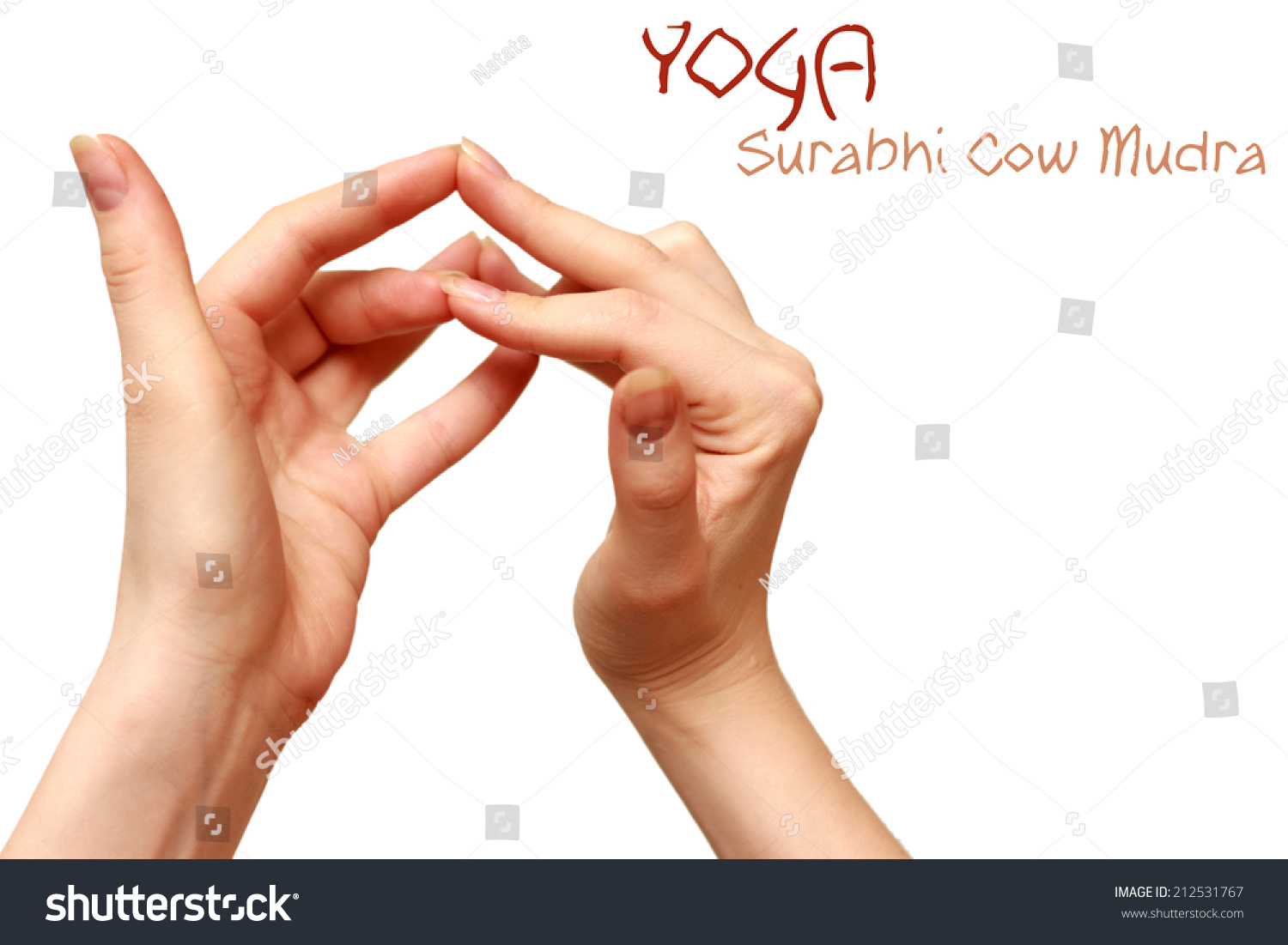Surabhi Cow Mudra Yoga Gesture Women Hands Isolated. Rigler Sign Signs. Dermatoglyphics Signs. Diseased Kidney Signs Of Stroke. Teeth Signs Of Stroke. Word Cloud Signs. Tea Coffee Signs. Makaton Sources Signs. Very Hungry Caterpillar Signs
