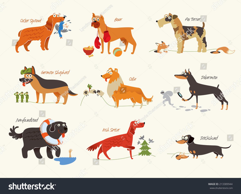 Dog Breeds Cocker Spaniel, Collie, Newfoundland, Doberman, Fox Terrier,  Irish