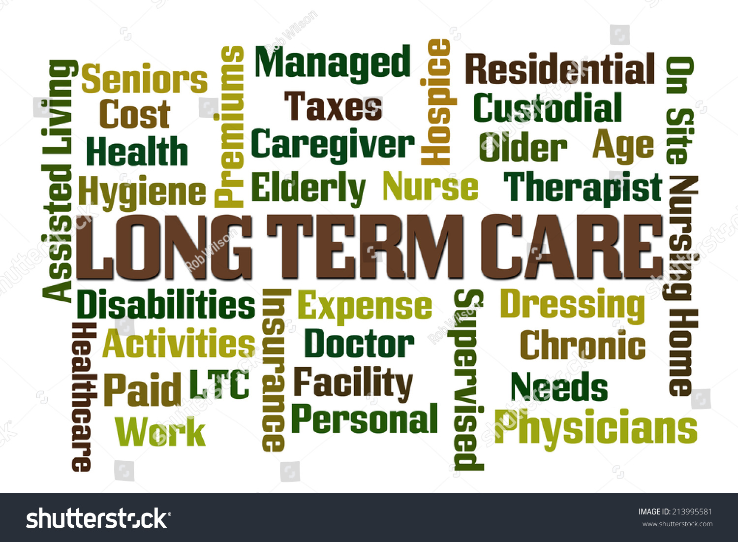 Long Term Care Word Cloud On Stock Illustration 213995581