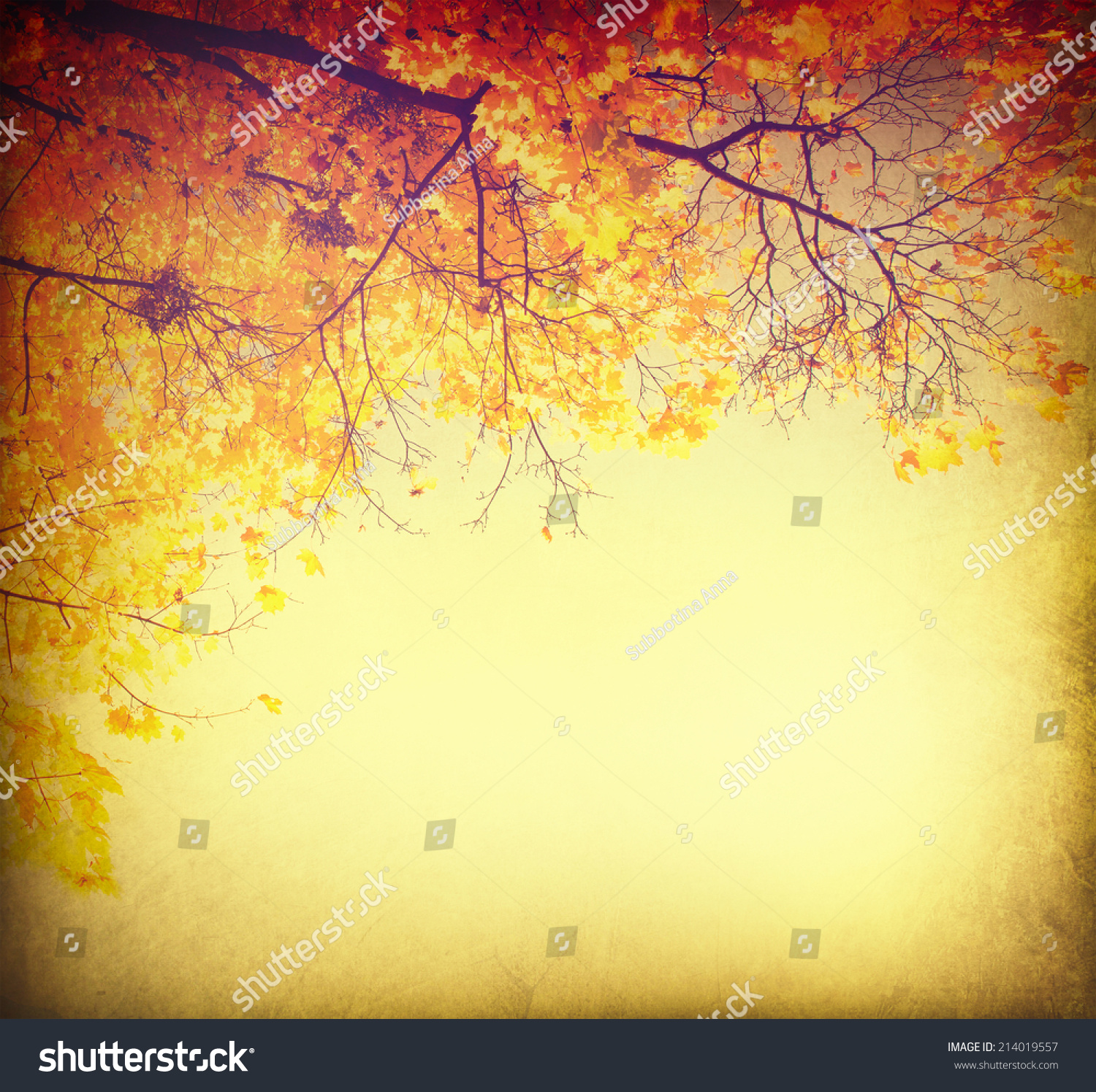 Autumn Background Fall Abstract Vintage Autumnal Stock