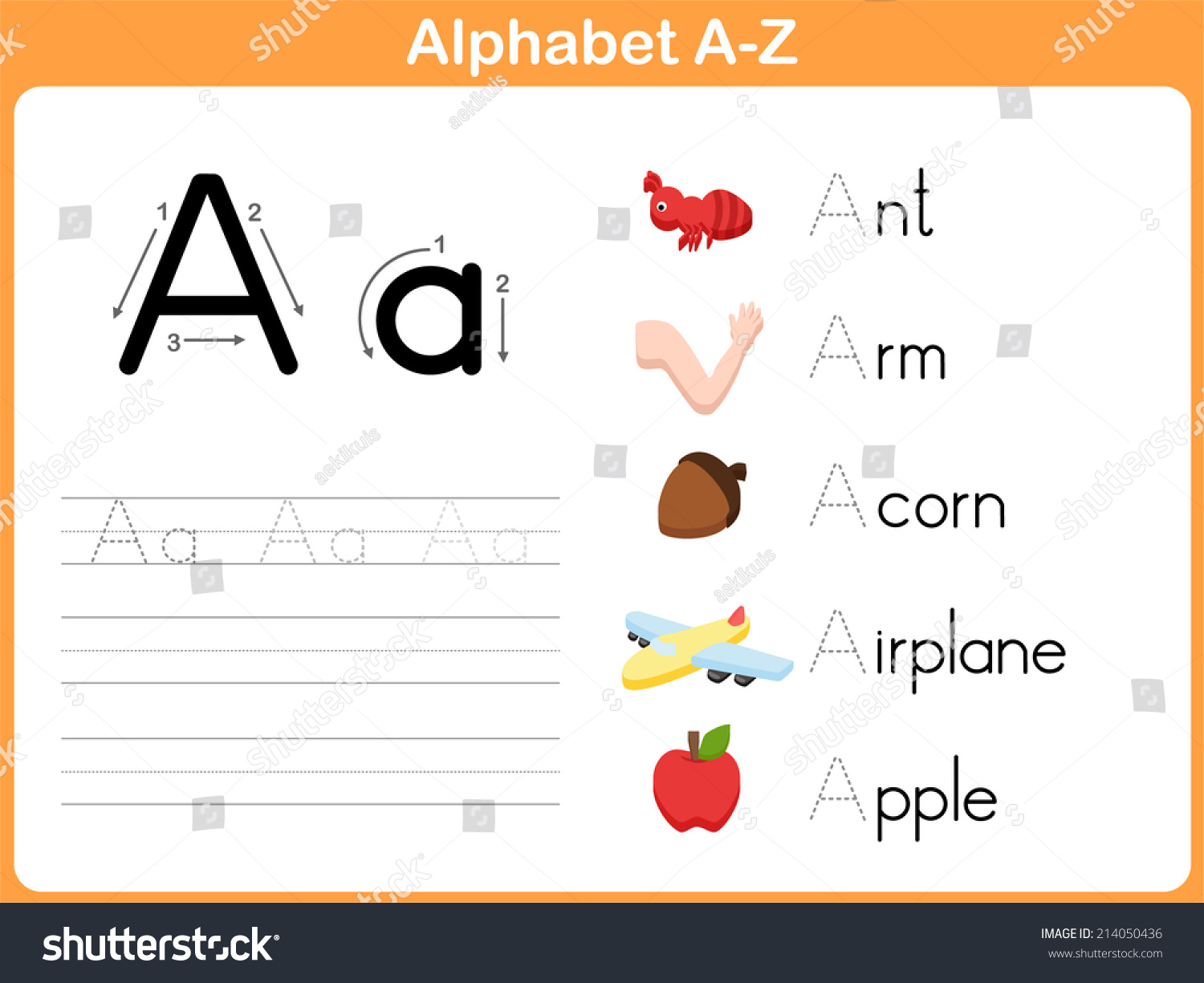Alphabet Tracing Worksheet Writing Az Vector 214050436 – Alphabet Tracing Worksheets