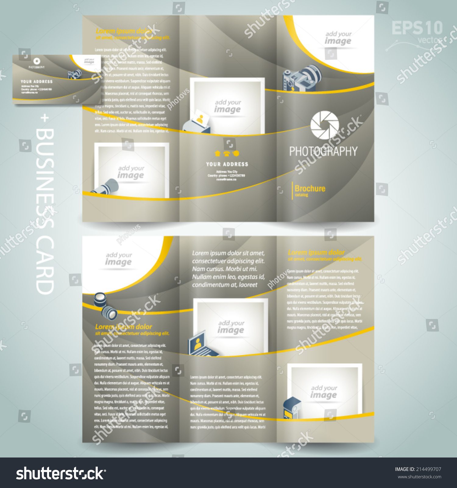 graphy Brochure Design Template Diaphragm Stock Vector