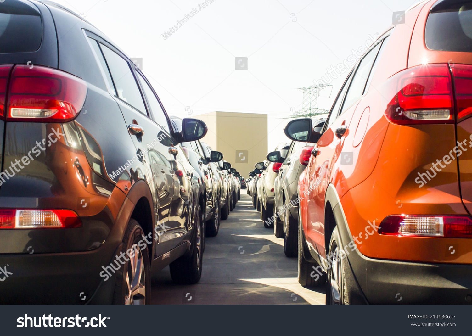 Row New Cars Parked Car Dealer Stock Photo 214630627 Shutterstock