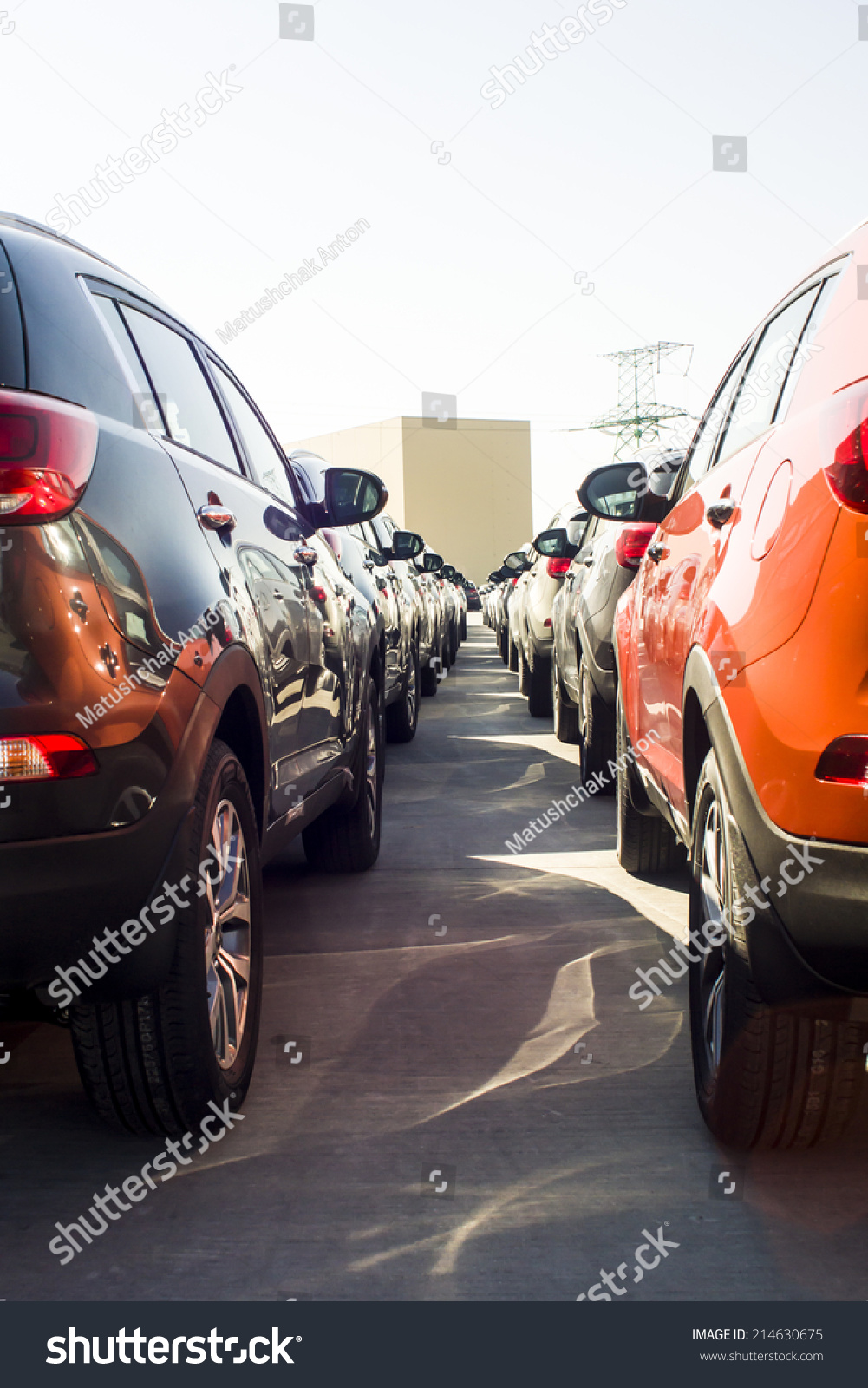 Row New Cars Parked Car Dealer Stock Photo 214630675 Shutterstock