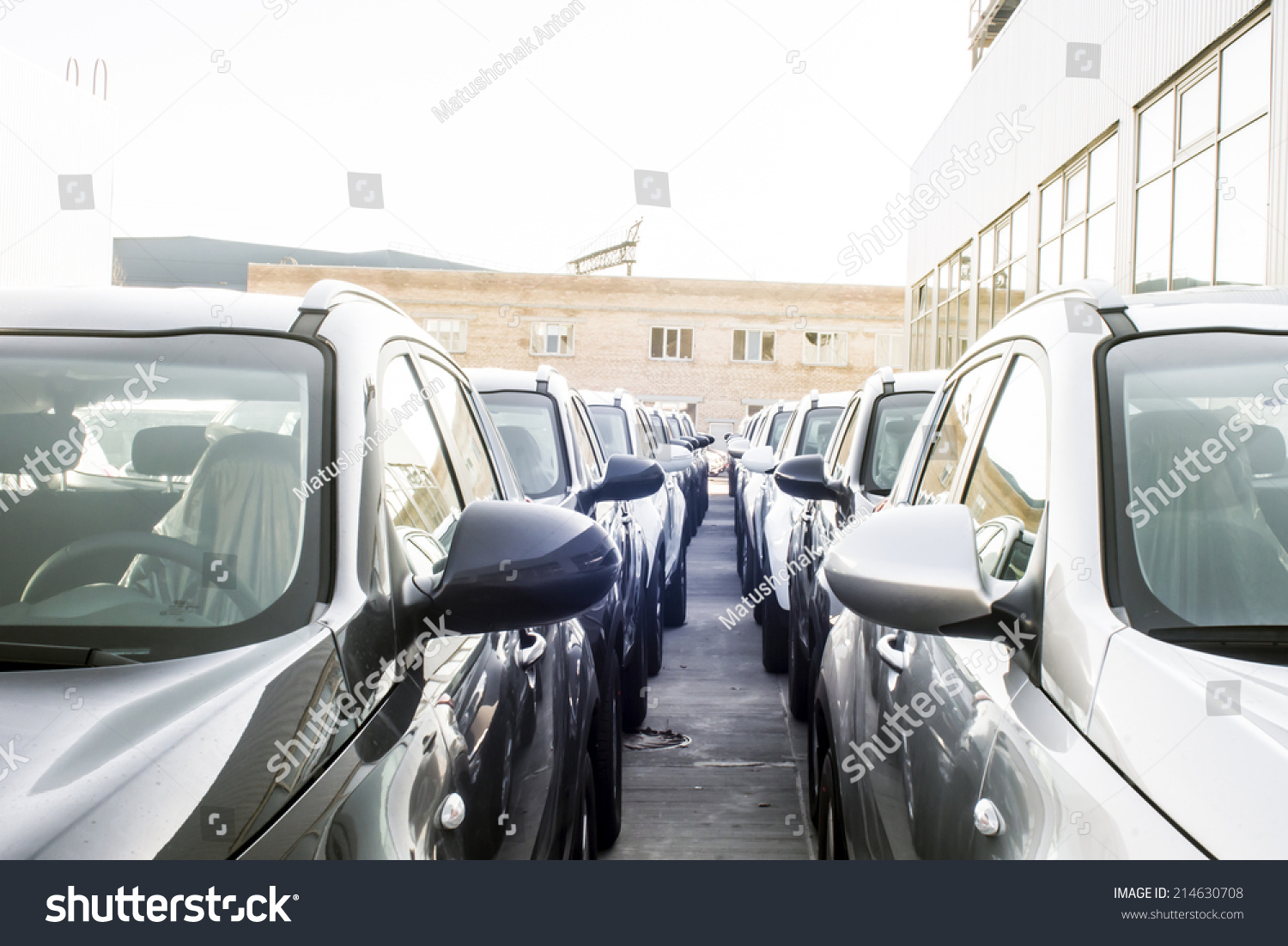 Row New Cars Parked Car Dealer Stock Photo 214630708 Shutterstock