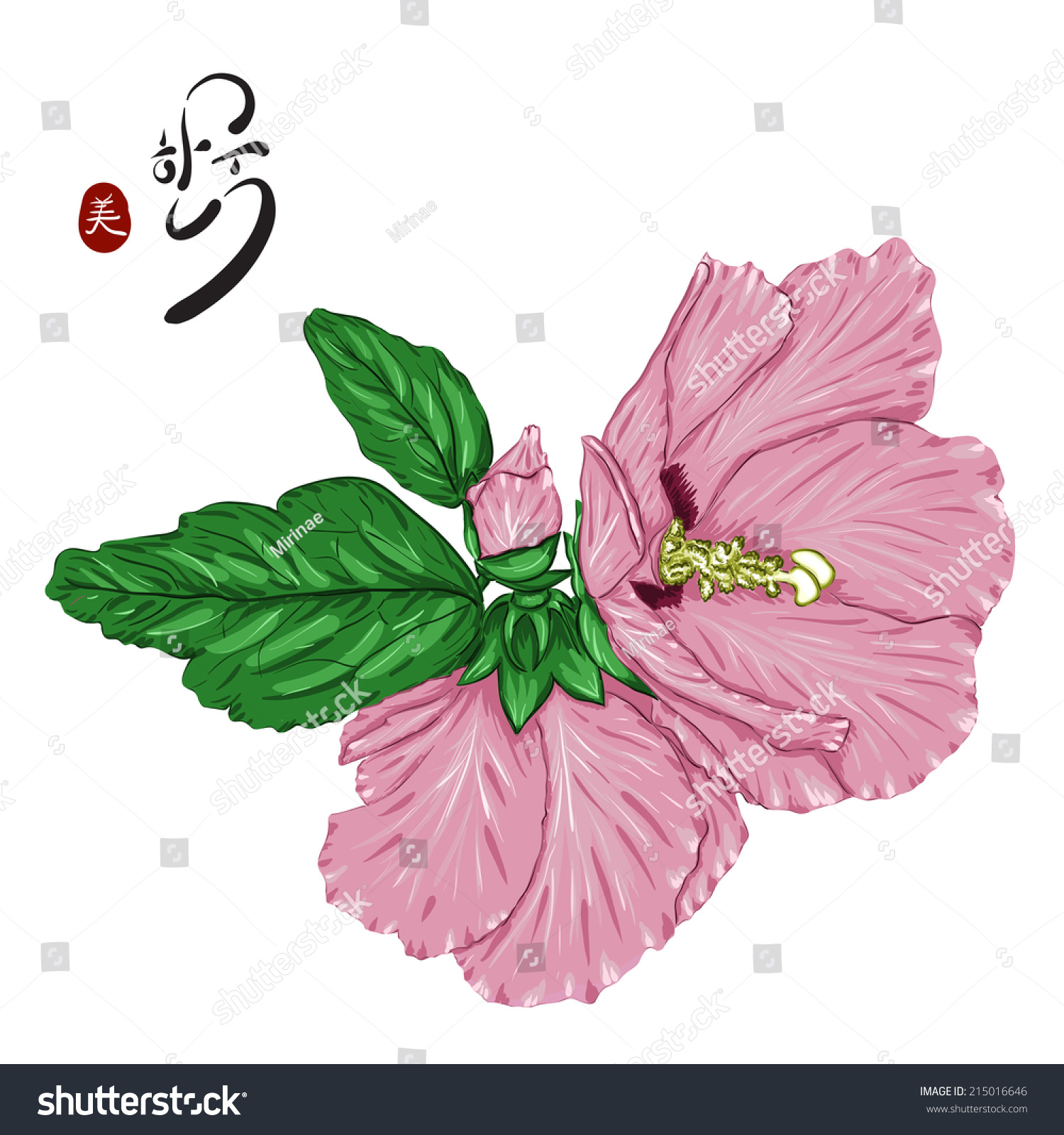 Rose Sharon Korean National Flower Hieroglyph Stock Vector Royalty