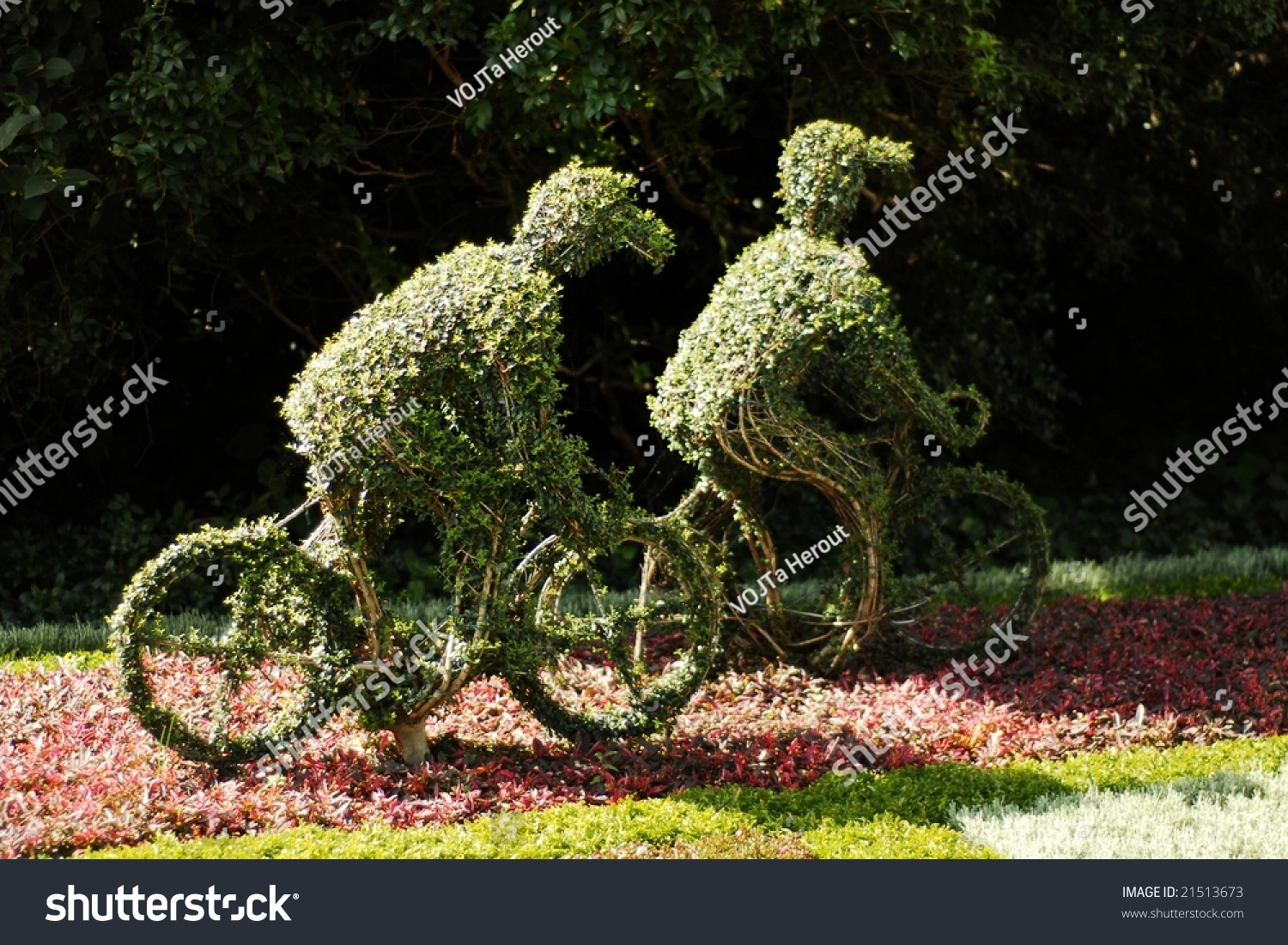 Two small bushes trimmed to the shape of cyclists stock for Small bushy trees
