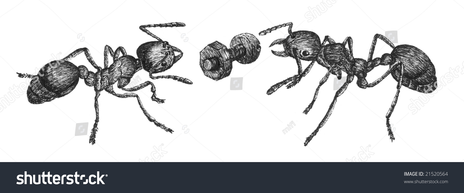 two ants bolt pen drawing stock illustration 21520564 shutterstock