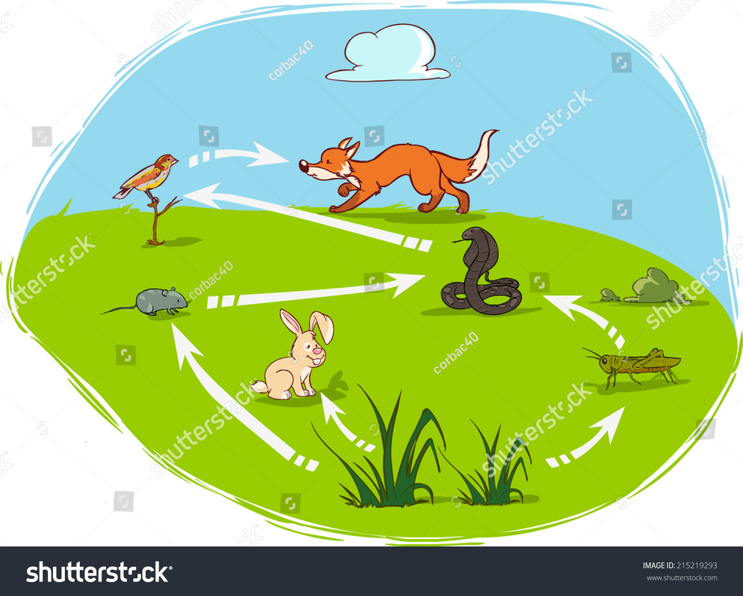 ecosystem diagram stock vector illustration    shutterstockecosystem diagram preview  save to a lightbox