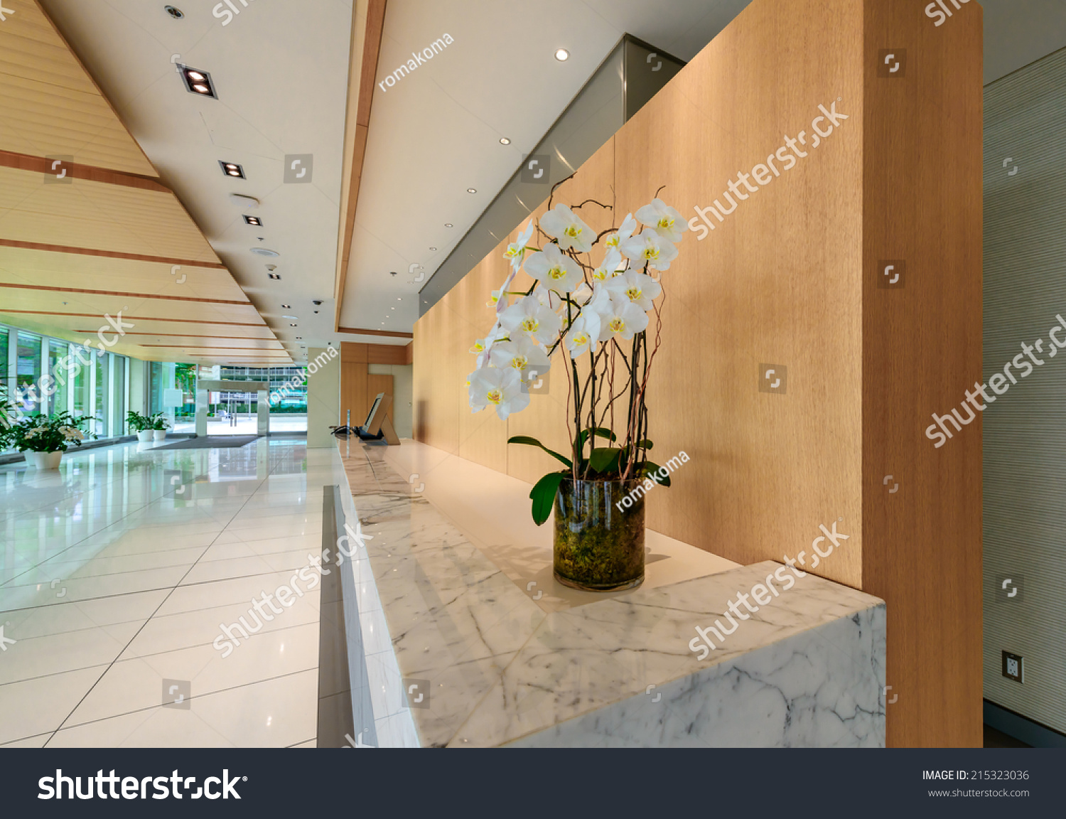 modern lobby hallway marble counter some stock photo 215323036