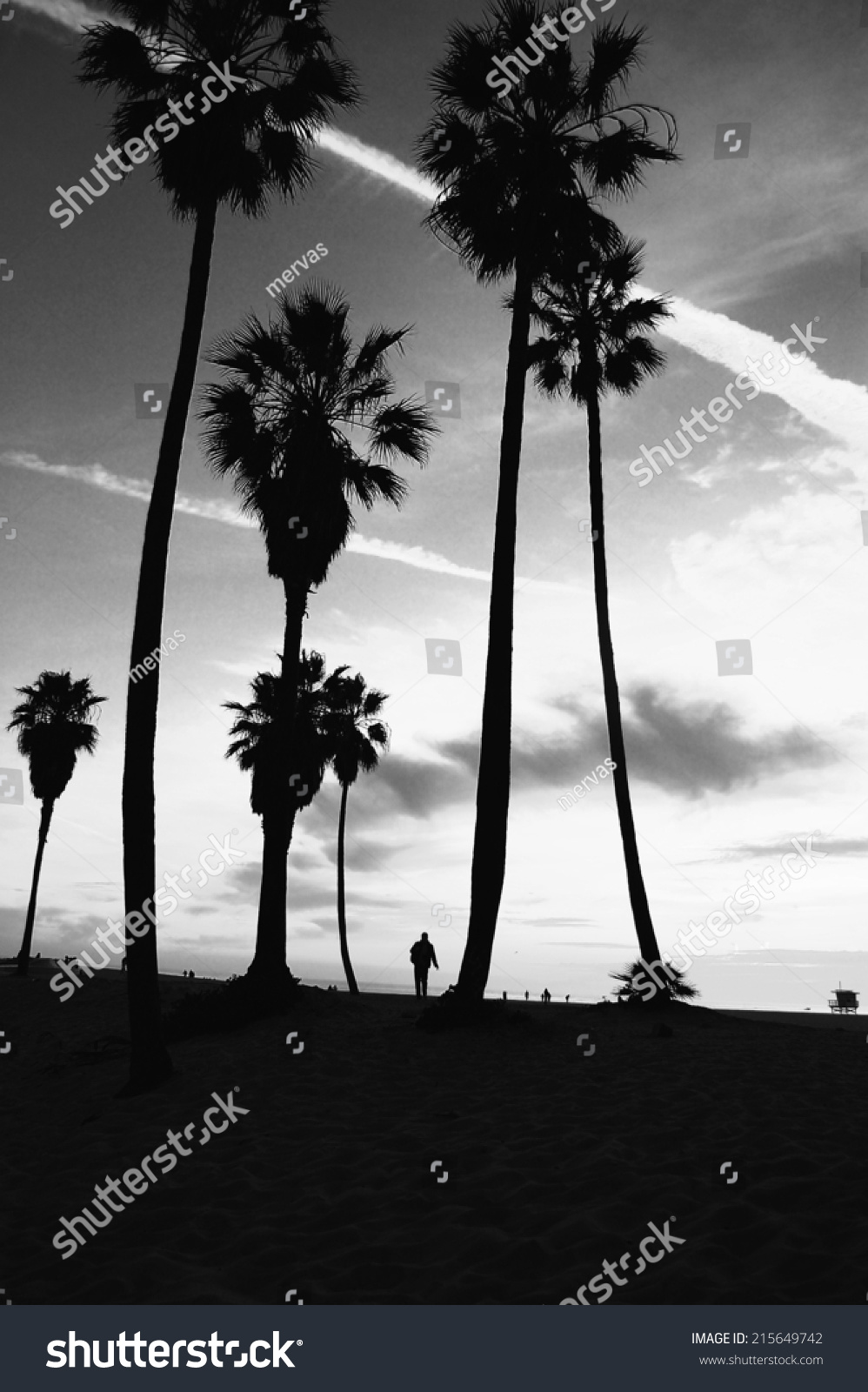 Venice beach sunset vintage retro black and white post processed tropical summer vacation and travel