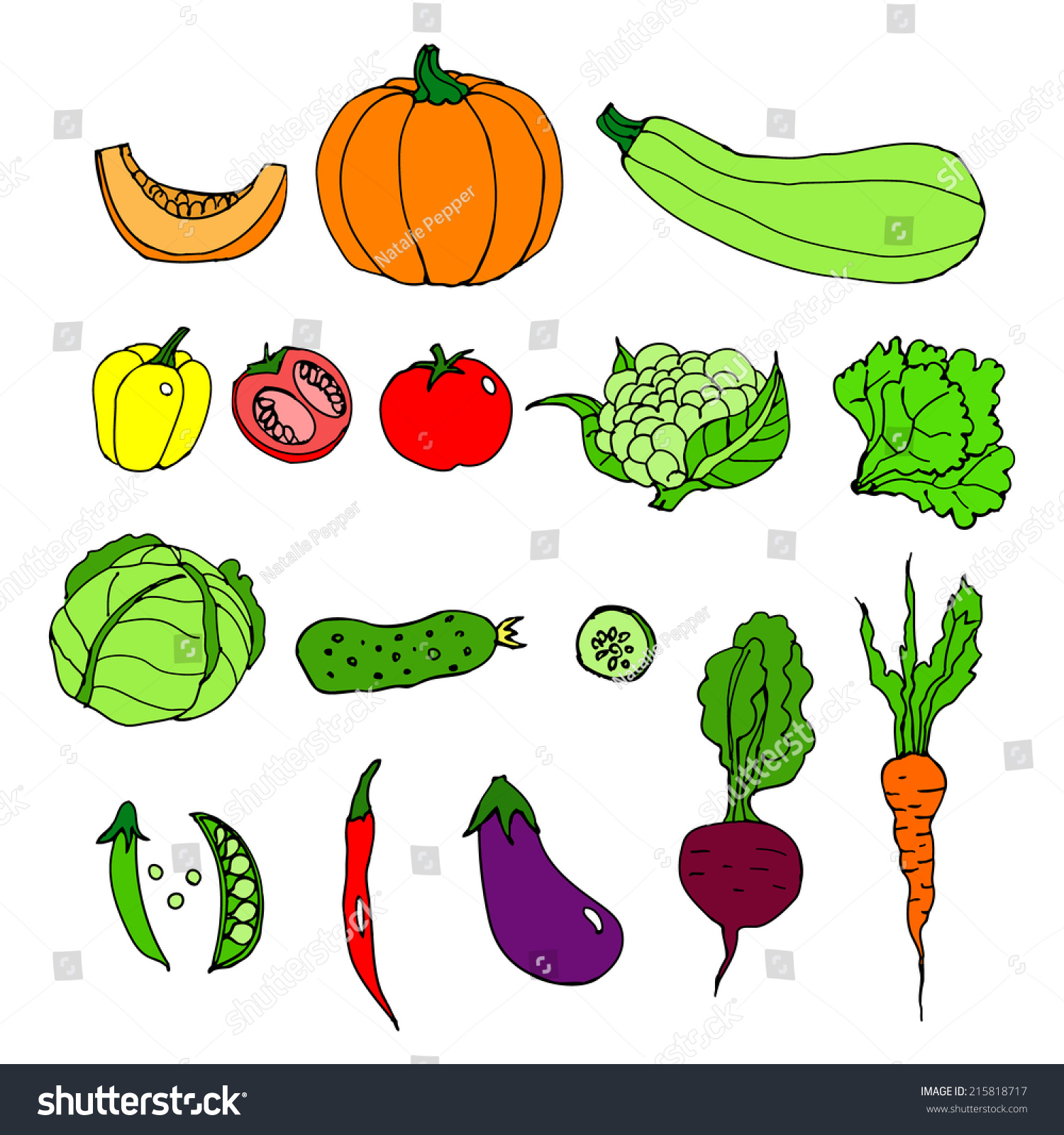 Line Drawing Zucchini : Set ripe vegetables cartoon pumpkin zucchini stock vector