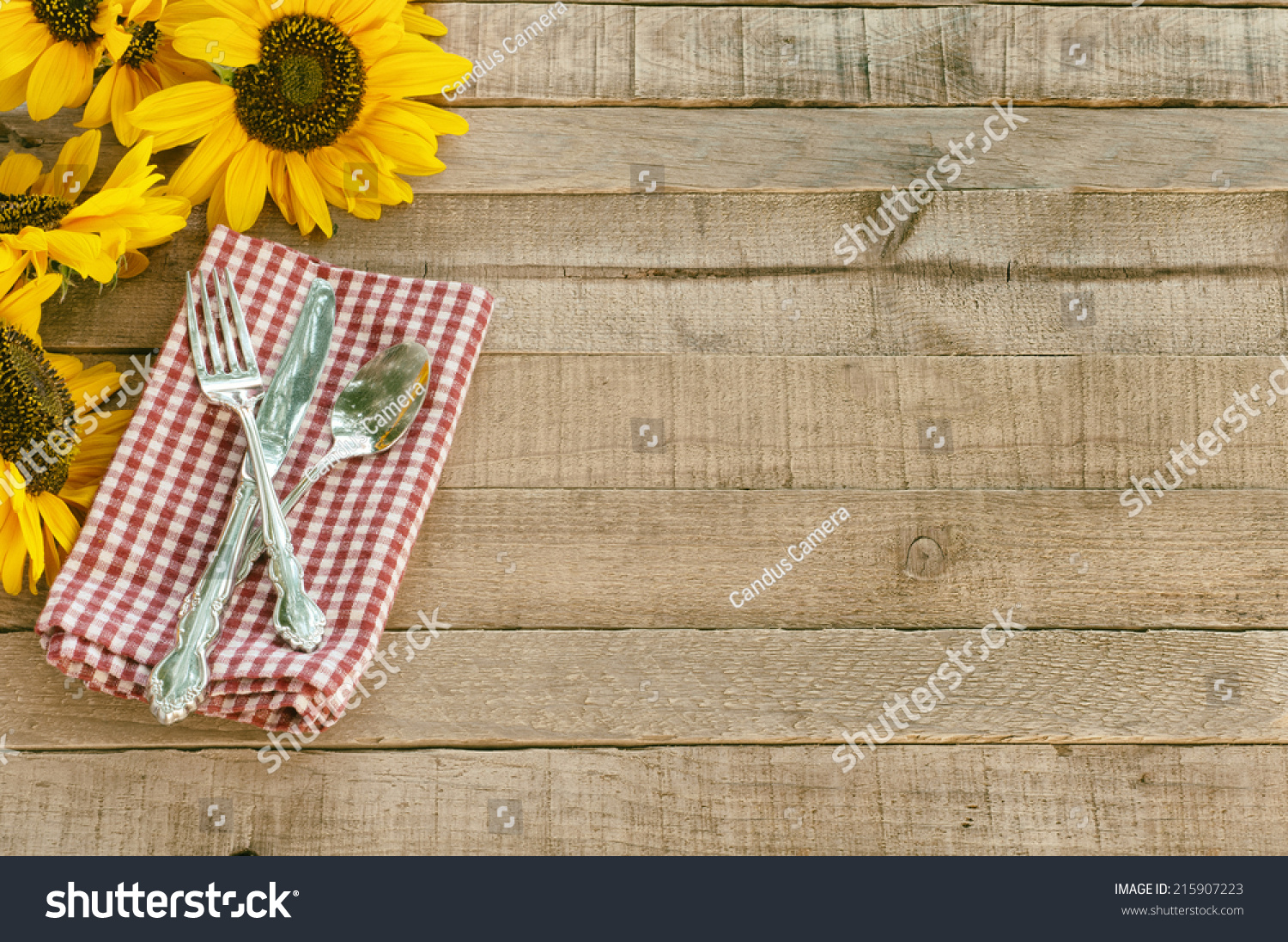 Picnic Table Setting with Pretty Cheerful Sunflowers Silverware red white checked napkin brown  sc 1 st  Avopix.com & Royalty-free Picnic Table Setting with Prettyu2026 #215907223 Stock ...