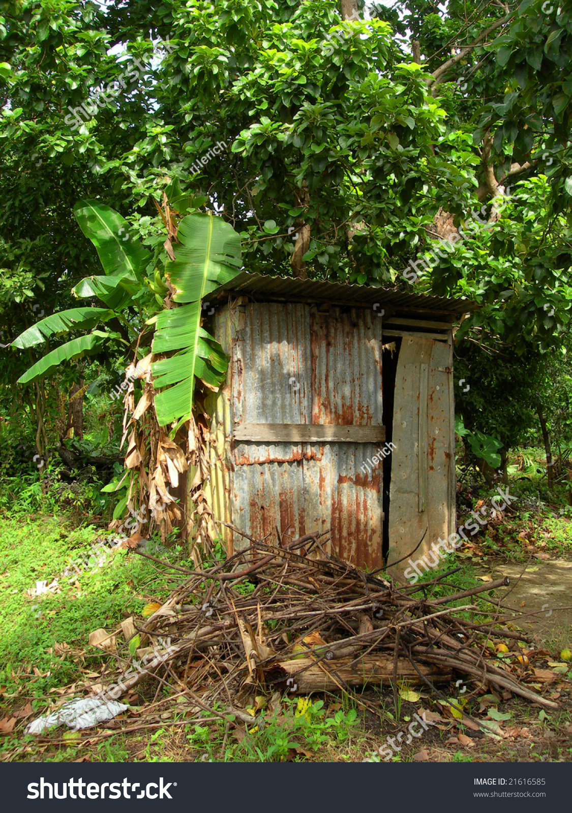 Outhouse Bathroom Zinc Sheet Metal House With Banana Tree Corn - Outhouse bathroom