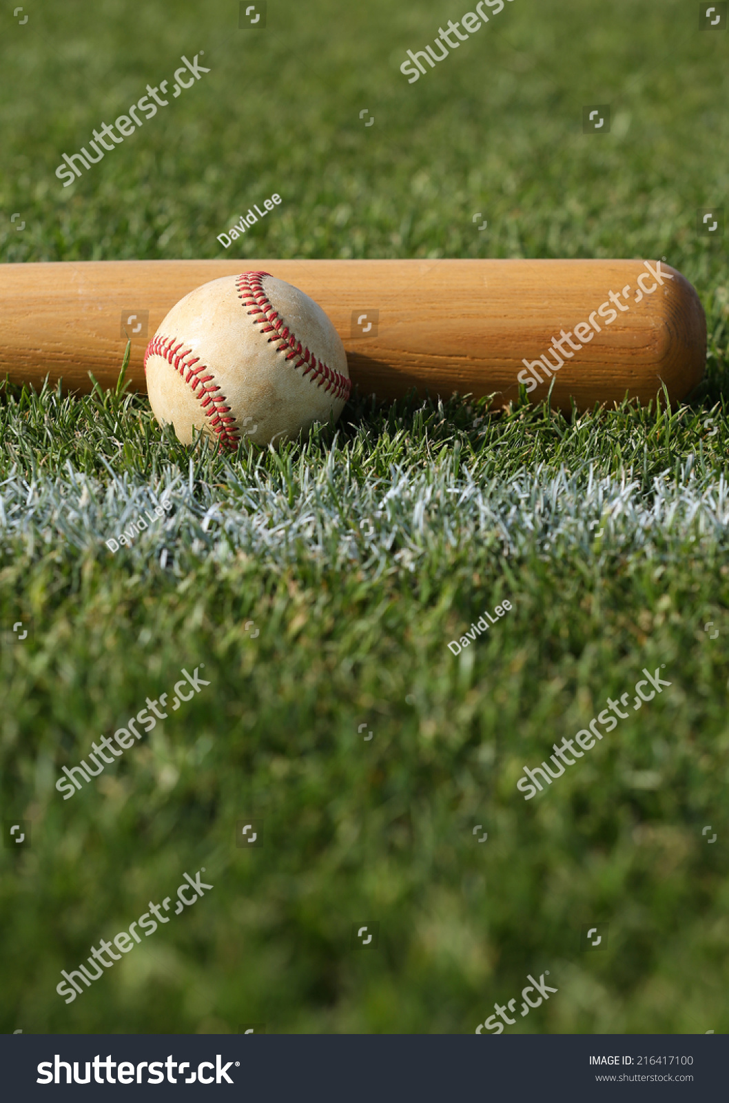 Baseball Bat On The Grass With Room For Copy