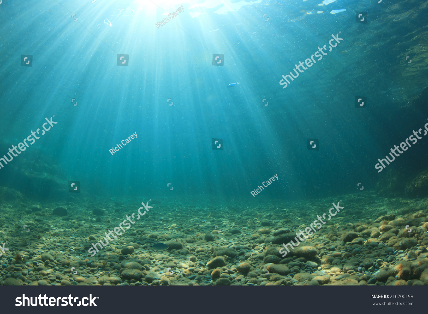 Stock options underwater
