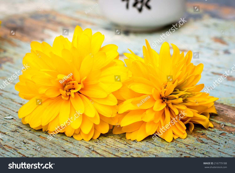 Pair Yellow Flowers Golden Ball Stock Photo Edit Now 216779188