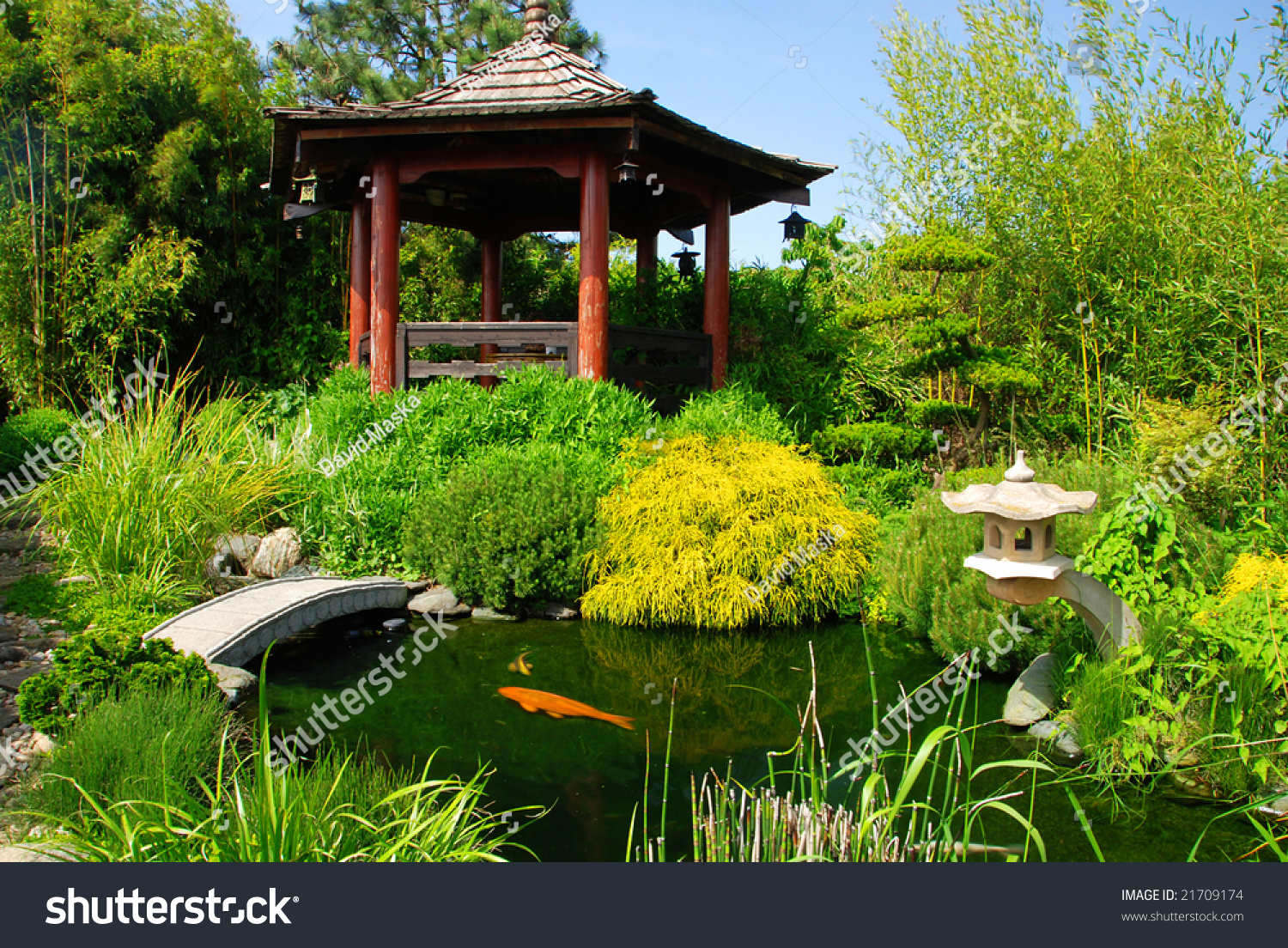 japanese koi garden beautiful japanese garden with many plant pecies and water pond where you