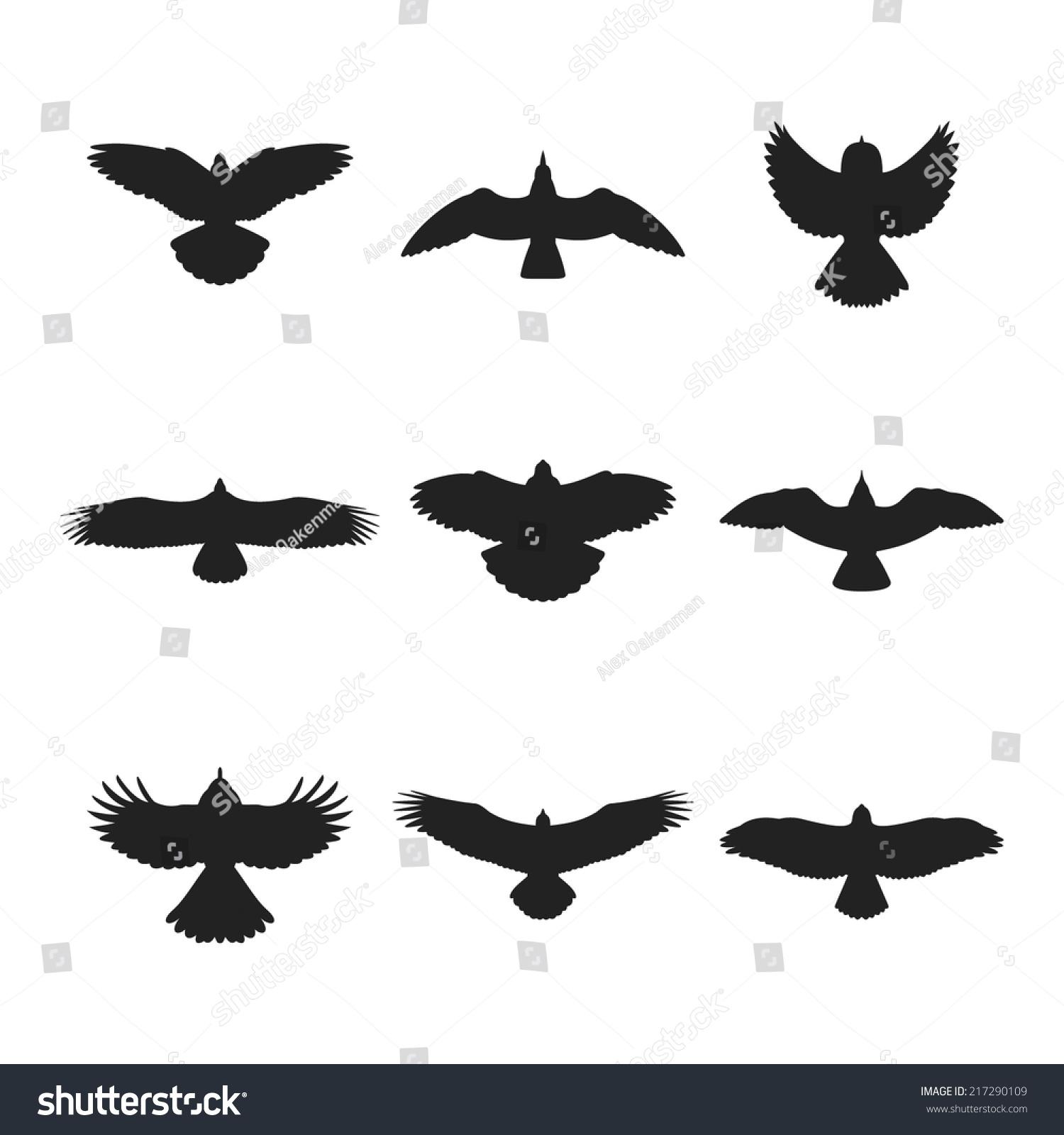 Flying Bird Like Eagle Sparrow Dove Stock Vector 217290109 ... Flying Hawk Silhouette Vector