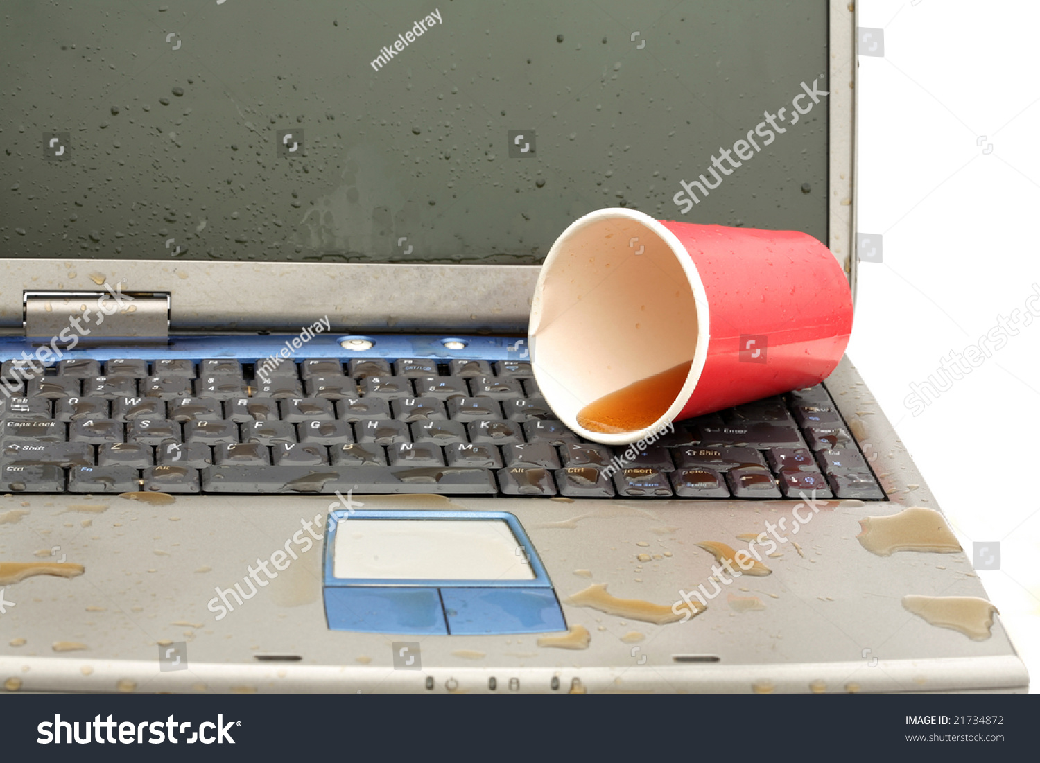 Help!! Please help! Spilled Tea on Laptop and IPhone 4?