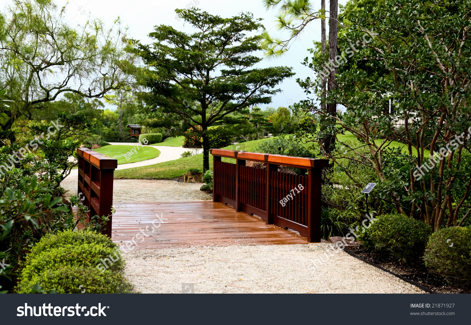 Florida S Natural Site Background Wood